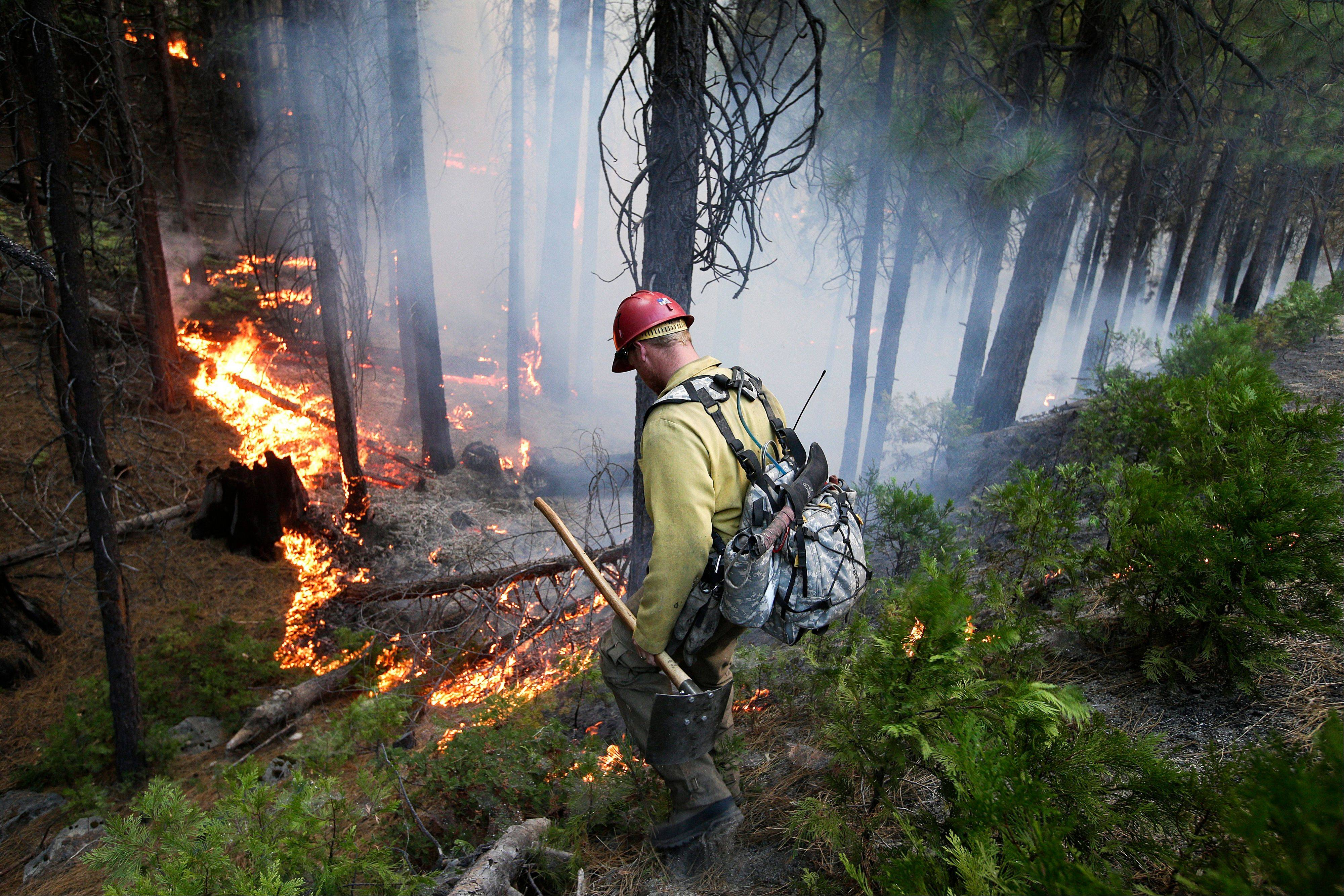 Firefighter Russell Mitchell monitors a back burn during the Rim Fire near Yosemite National Park, Calif., on Tuesday.