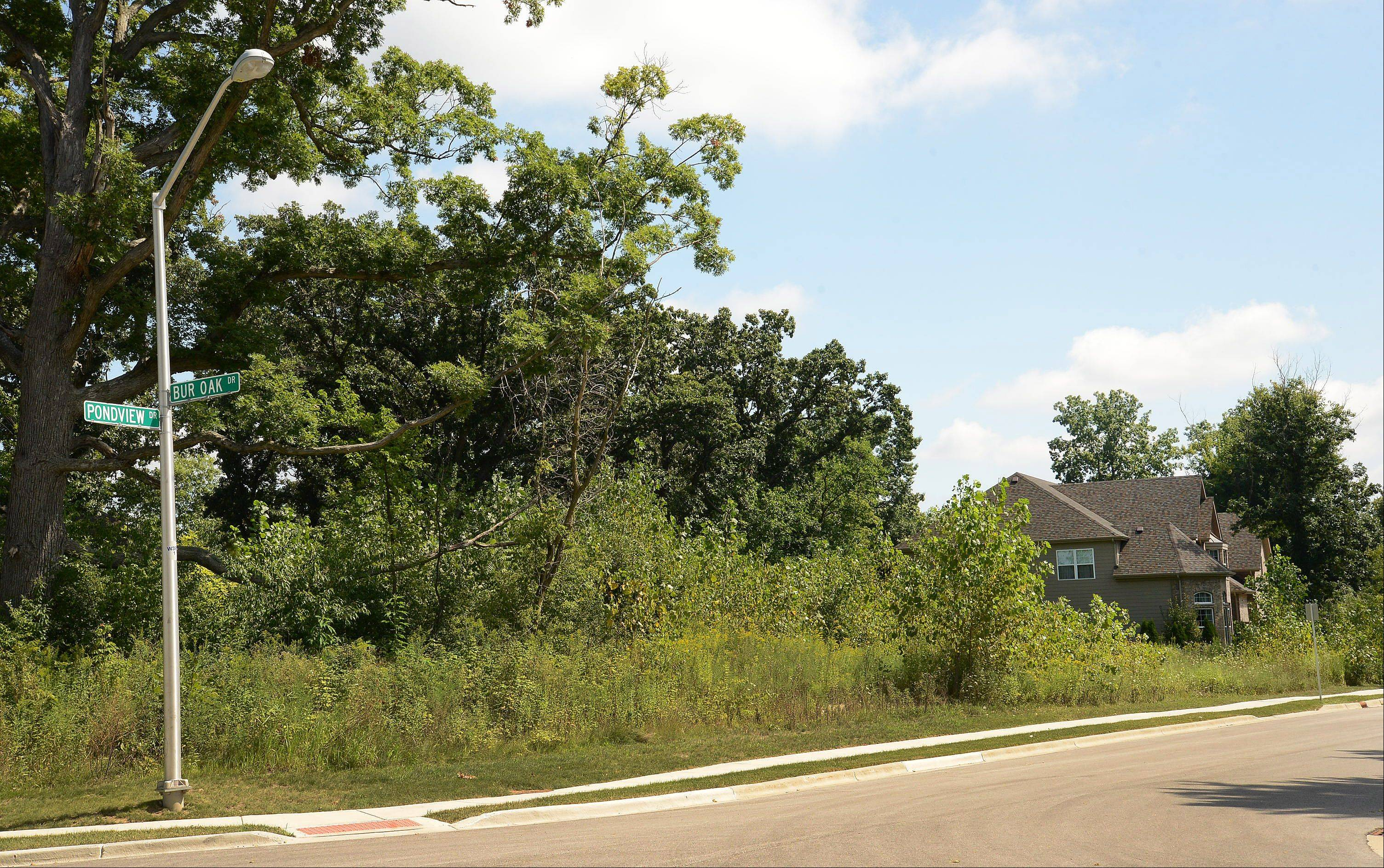 Residents of Hoffman Estates' Devonshire Woods Estates subdivision are unhappy with a developer's proposal to build smaller, less expensive homes on vacant lots in the neighborhood. The developer gave an informal presentation of the plan to village leaders this week.