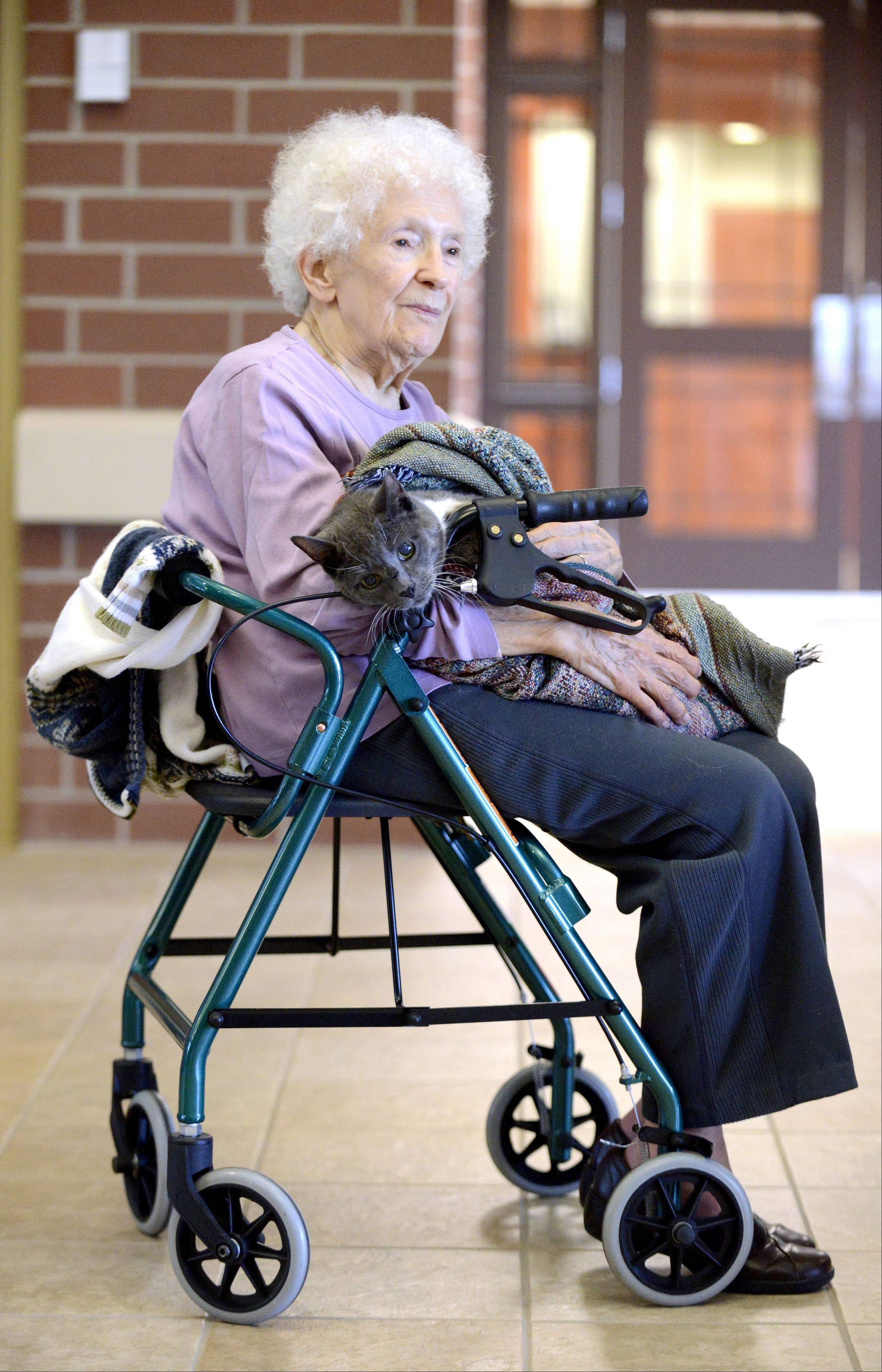 Verla Thompson sits in Huntley Village Hall with her 22-year-old cat, CeCe, on her lap as they wait for a bus ride home. A gas leak forced evacuation Thursday at about 9 a.m. from Heritage Woods of Huntley, an assisted living residence. Residents were moved back in shortly after 11 a.m.