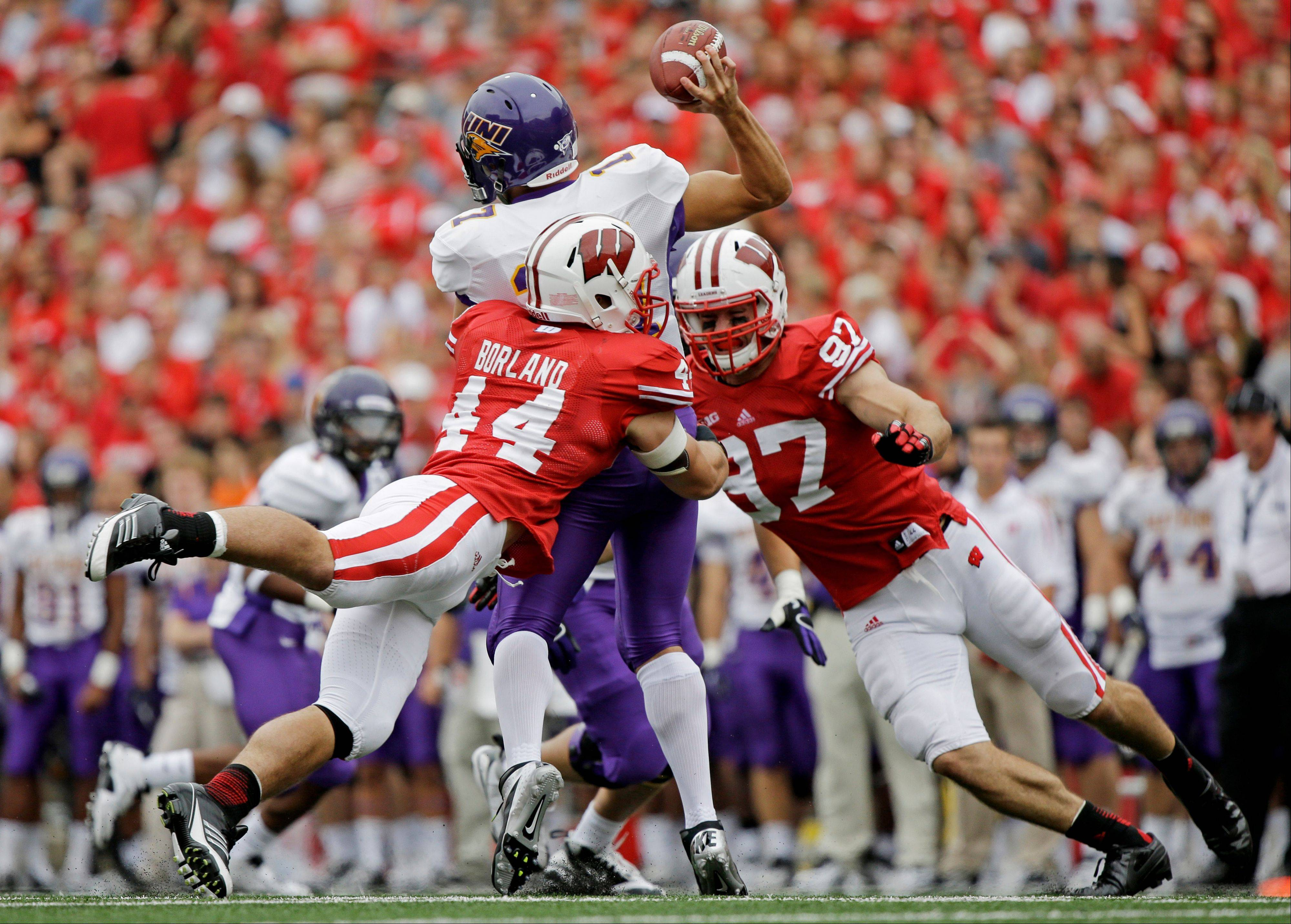 Wisconsin's Chris Borland (44) and Brendan Kelly hit Northern Iowa's Sawyer Kollmorgen as he throws during a game last season in Madison. Borland's 13 career forced fumbles are one short of tying the major college record.
