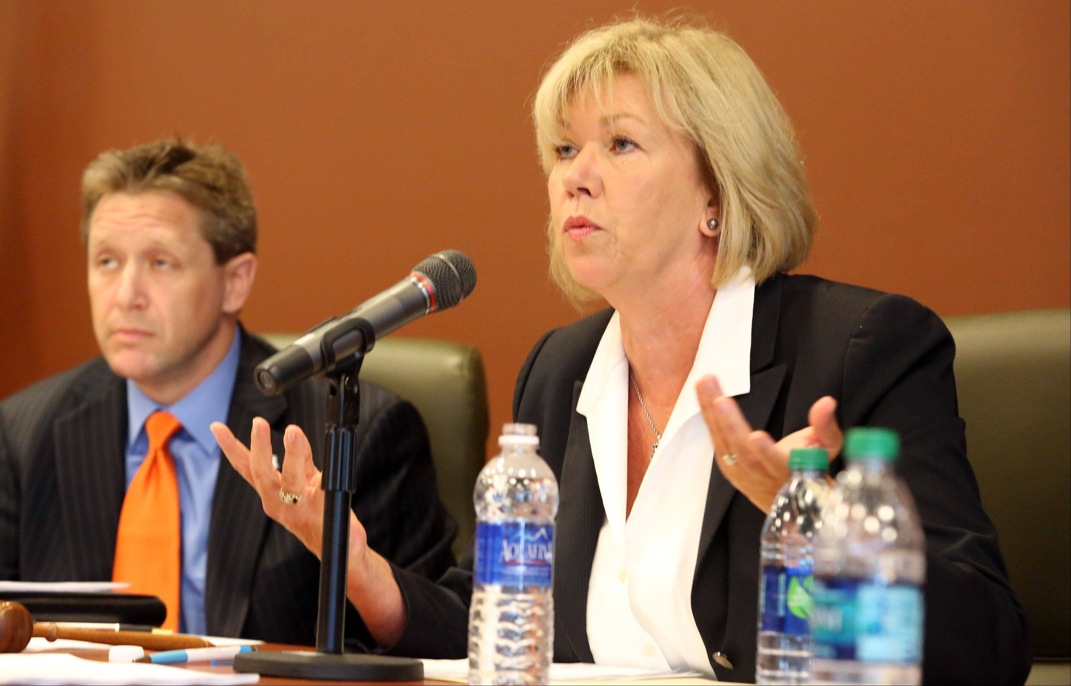 Democratic state Sen. Julie Morrison of Deerfield leads a committee hearing Thursday on proposed tougher boating laws in Libertyville. Her 10-year-old nephew, Tony Borcia, died in a 2012 boating accident.