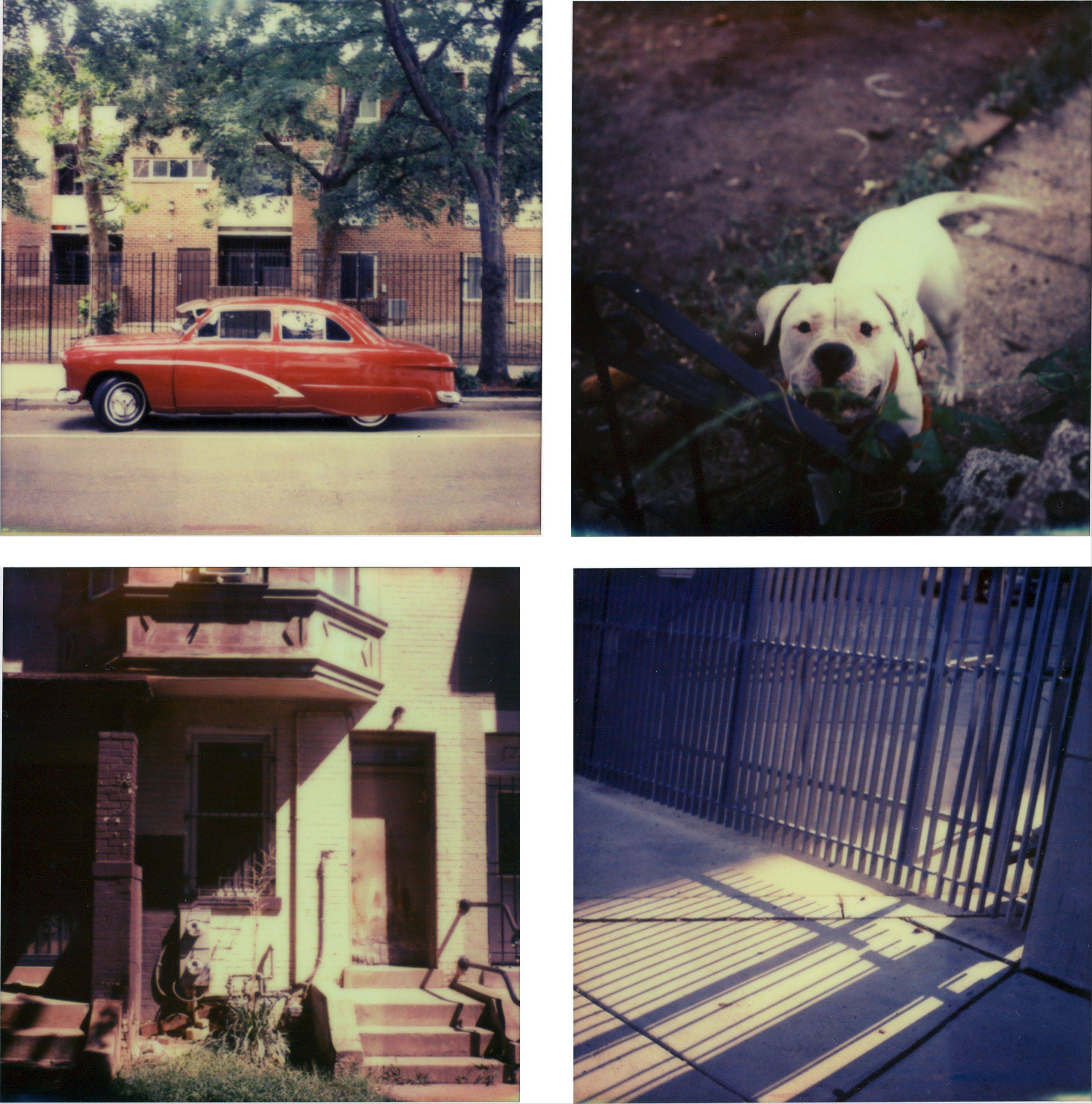 Top left, a vintage car; top right, a local dog greets the photographer; bottom left, a residence in morning light; and bottom right, a gate at the Bureau of Alcohol, Tobacco, Firearms and Explosives. All photos were taken in Washington with a Polaroid SX-70 camera using the Impossible Project�s PX 70 Color Protection film.