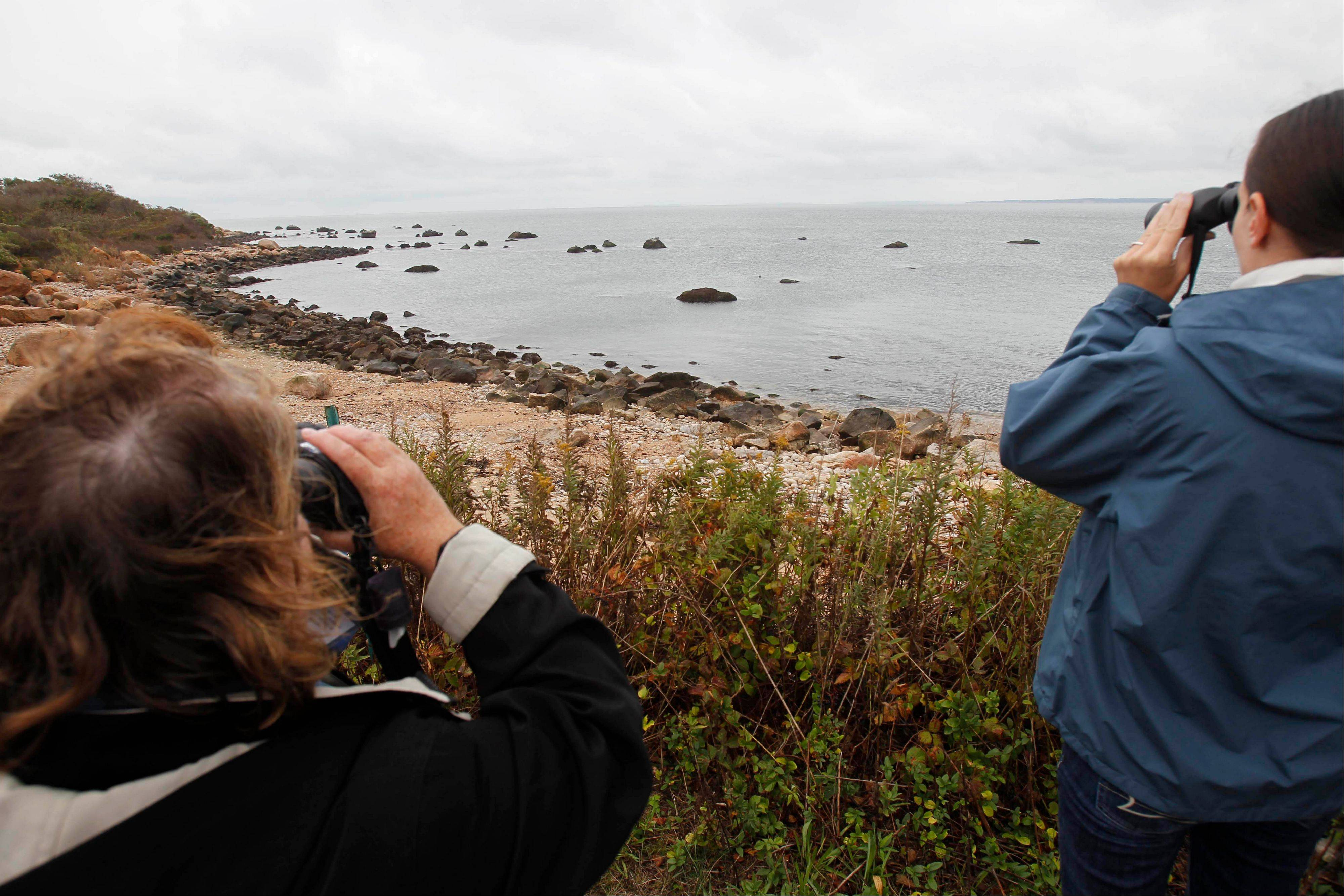 People on a tour of Plum Island, N.Y., off the coast of Long Island, watch seals relaxing on the rocky shore. Environmental groups on both sides of Long Island Sound have for several years called for the property, where the U.S. Department of Agriculture studies animal diseases, to be kept as a nature preserve.