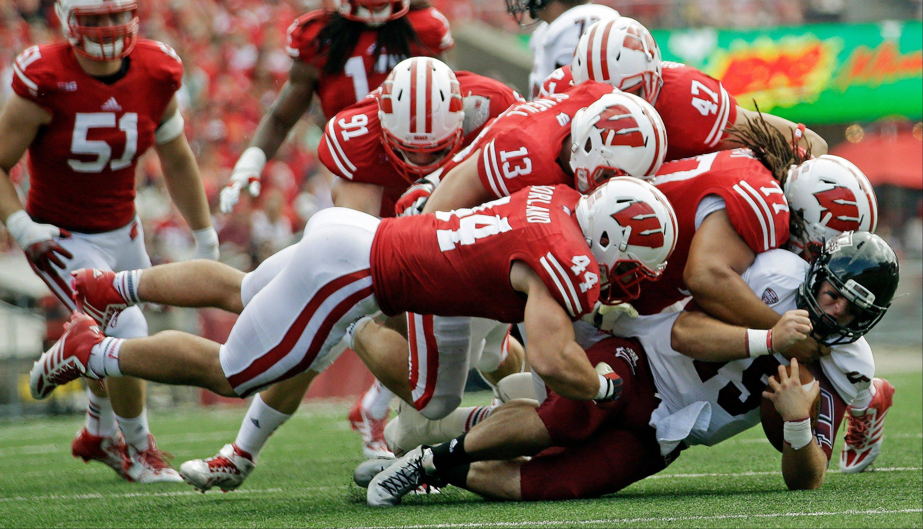 Wisconsin's Chris Borland (44), Conor O'Neill (13), Vince Biegel (47) and Bryce Gilbert (77) tackle Massachusetts quarterback A.J. Doyle during the second half of Saturday's game in Madison, Wis.