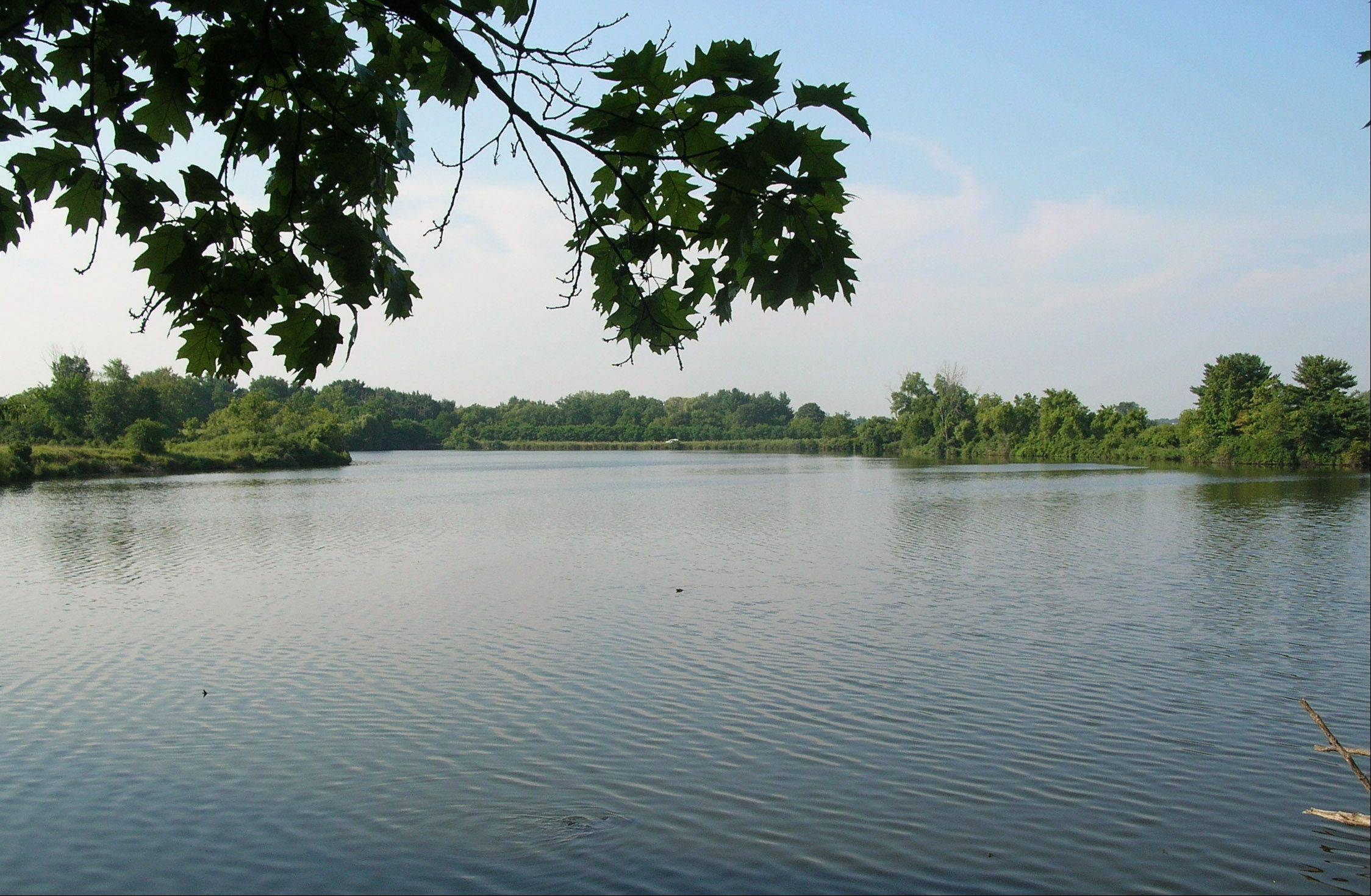 The Lake County Forest Preserve District is moving forward with plans to drain Rasmussen Lake in the Ethel�s Woods Forest Preserve near Antioch and open the area to public access.