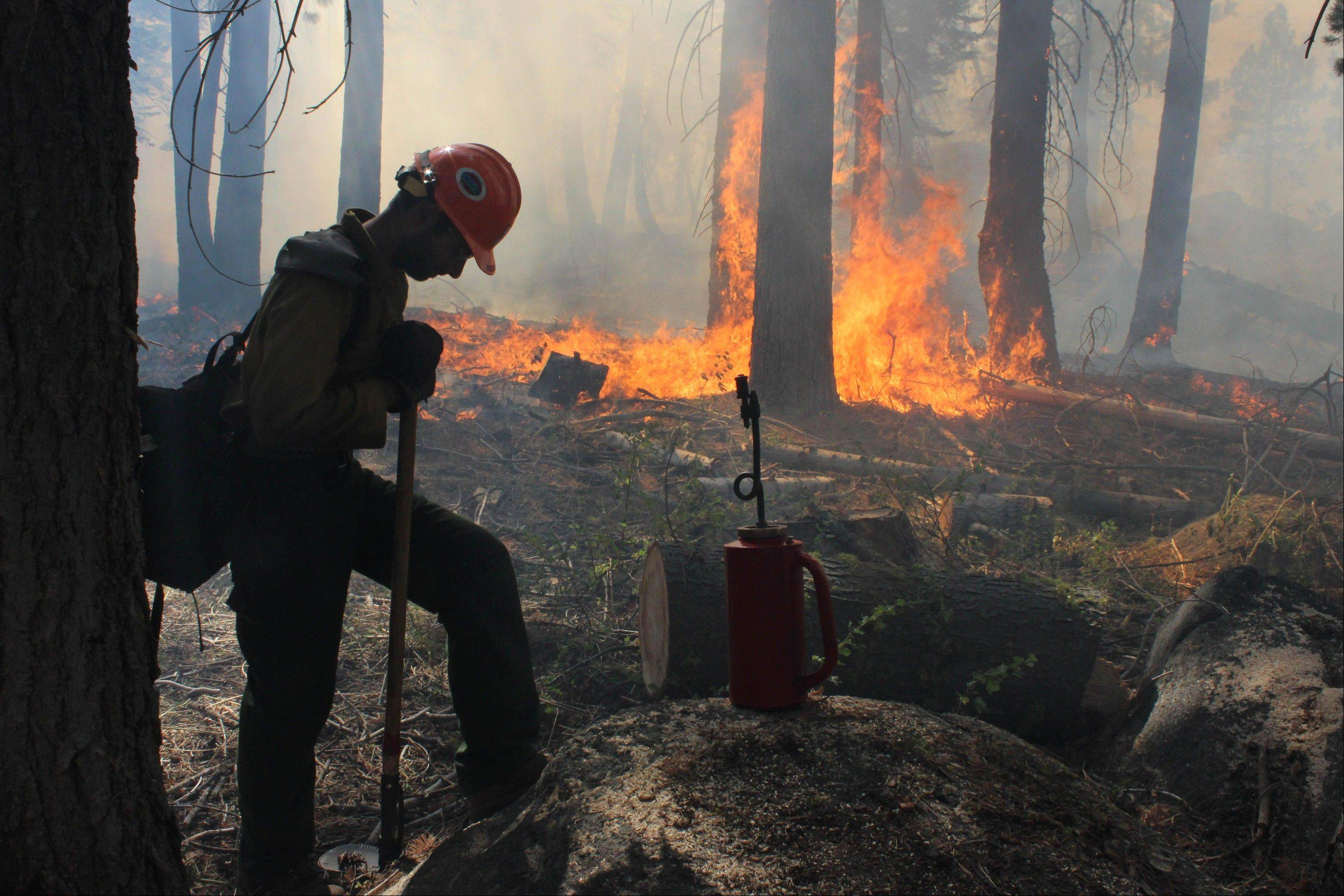 A Hotshot fire crew member rests Wednesday near a controlled burn operation at Horseshoe Meadows, as crews continue to fight the Rim Fire near Yosemite National Park.