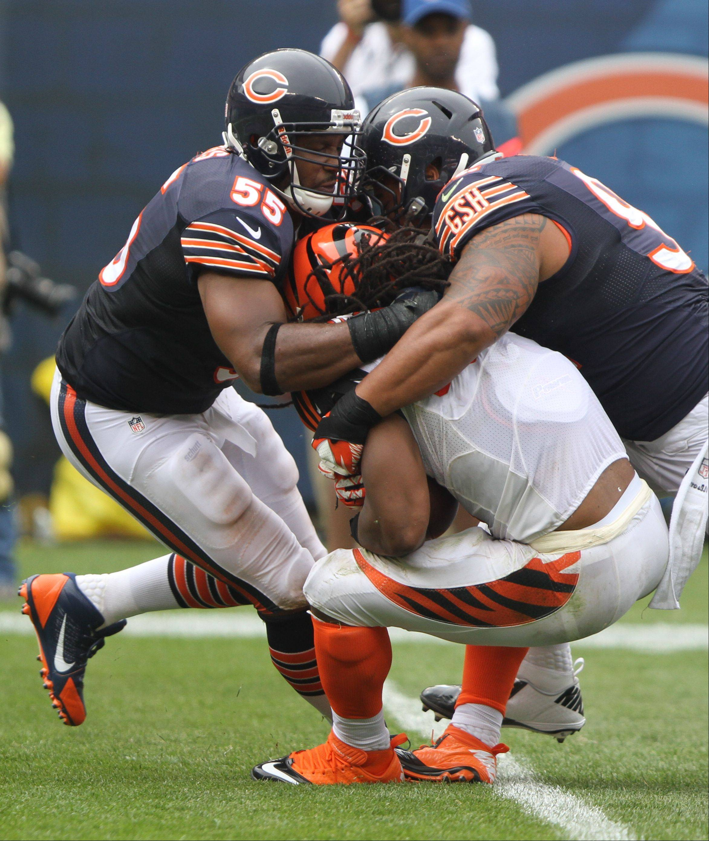Chicago Bears outside linebacker Lance Briggs and Chicago Bears defensive end Julius Peppers put a hit on Cincinnati Bengals running back BenJarvus Green-Ellis during their opening day game against the Cincinnati Bengals Sunday at Soldier Field in Chicago.