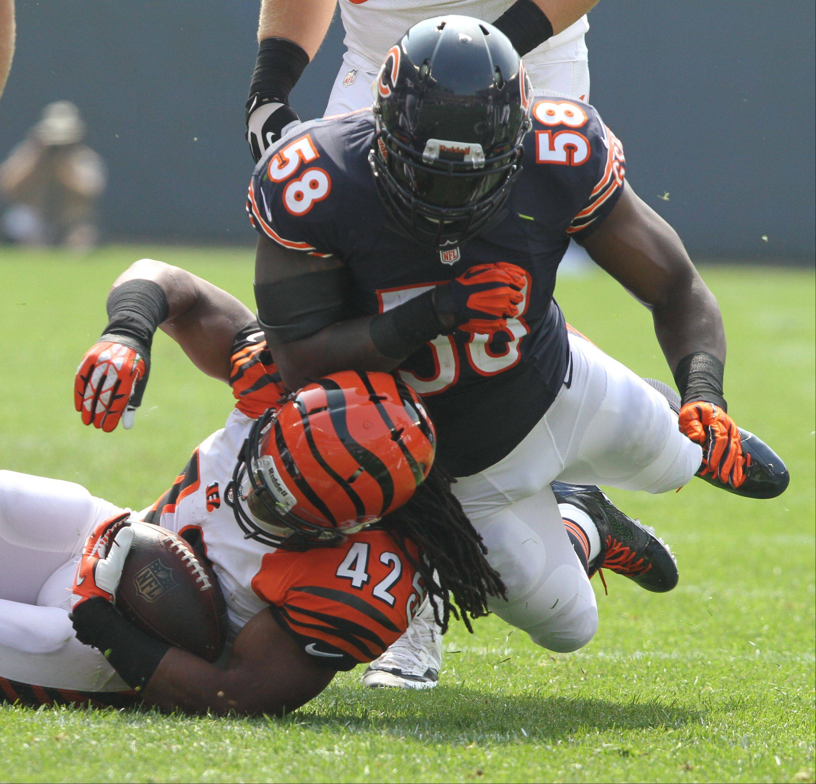 Chicago Bears outside linebacker D.J. Williams lays a hit on Cincinnati Bengals running back BenJarvus Green-Ellis during their opening day game against the Cincinnati Bengals Sunday at Soldier Field in Chicago.