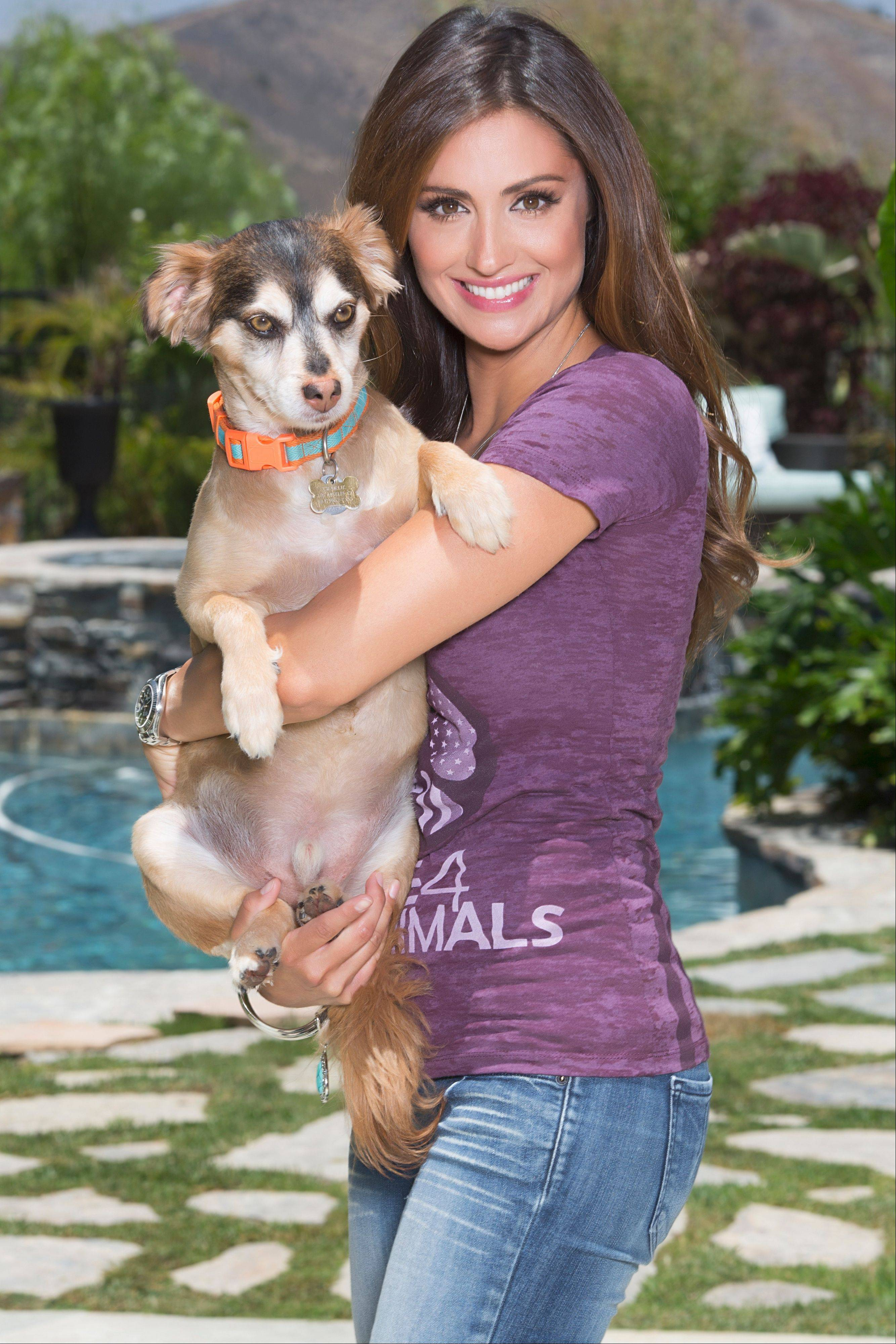 "Model, actress and animal rights advocate Katie Cleary, a native of Glenview, produced the new documentary film, ""Give Me Shelter,"" that will be released next month."