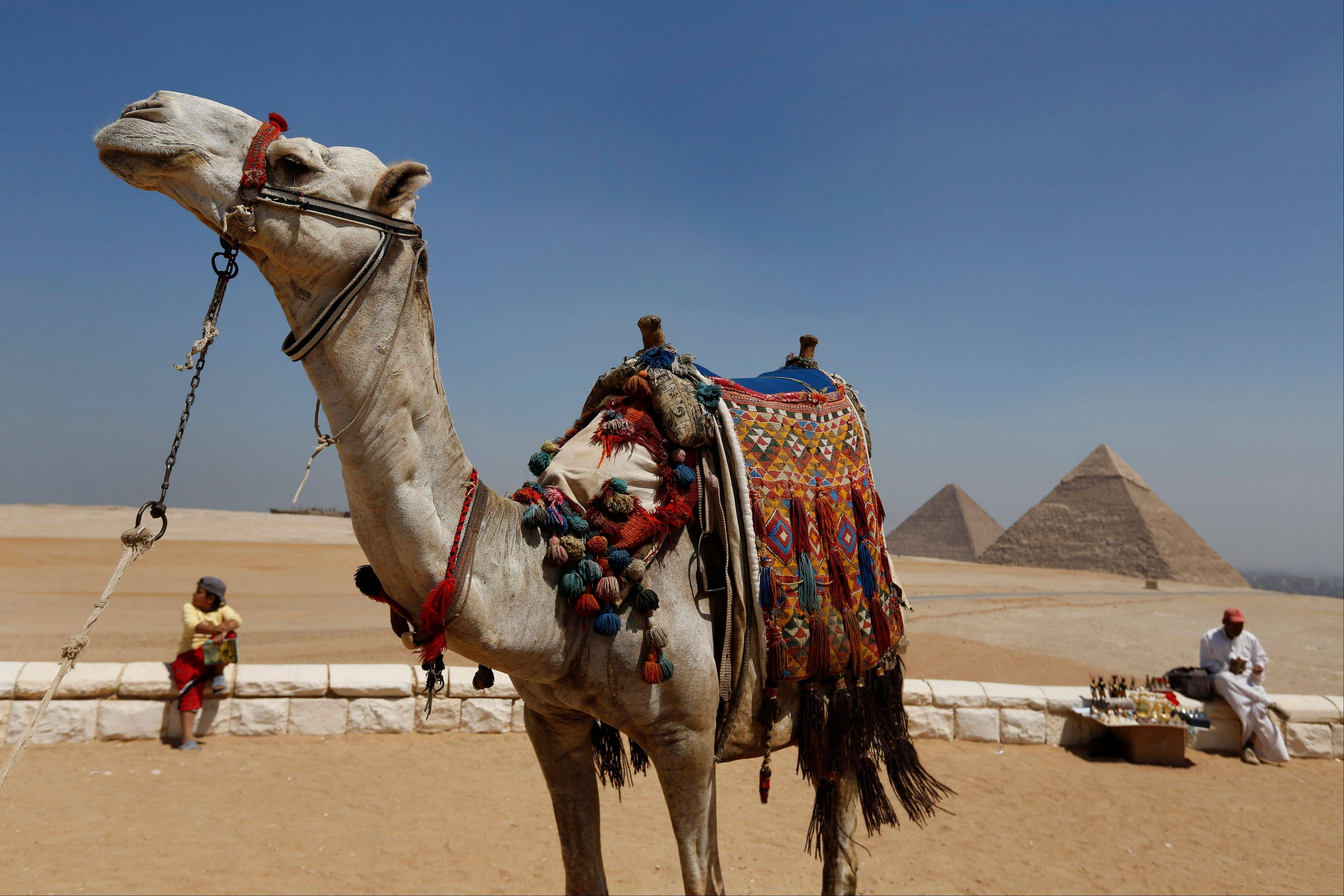 A tourist guide sits close to his camel as a vendor waits for tourists to offer souvenirs for sale at the historical site of the Giza Pyramids, near Cairo, Egypt.
