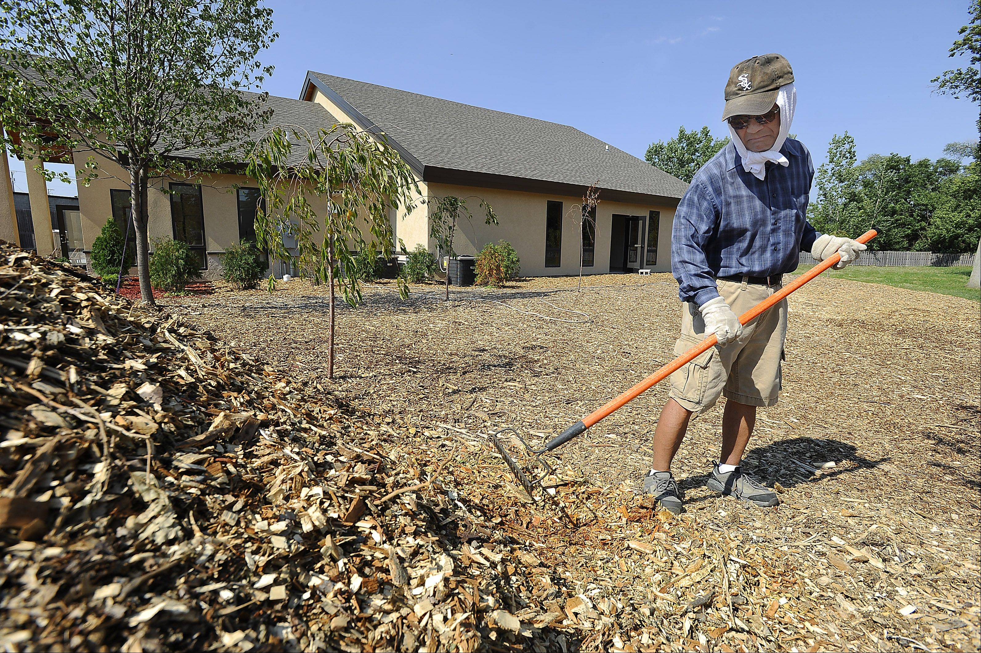 Mic Miyamoto of Buffalo Grove spreads wood chips landscaping the Chicago Japanese Mission Church in Arlington Heights on perhaps the hottest day of the year. Miyamoto wears what a typical Japanese farmer would wear long sleaves and gloves and a white towel around the head to prevent sunburn.
