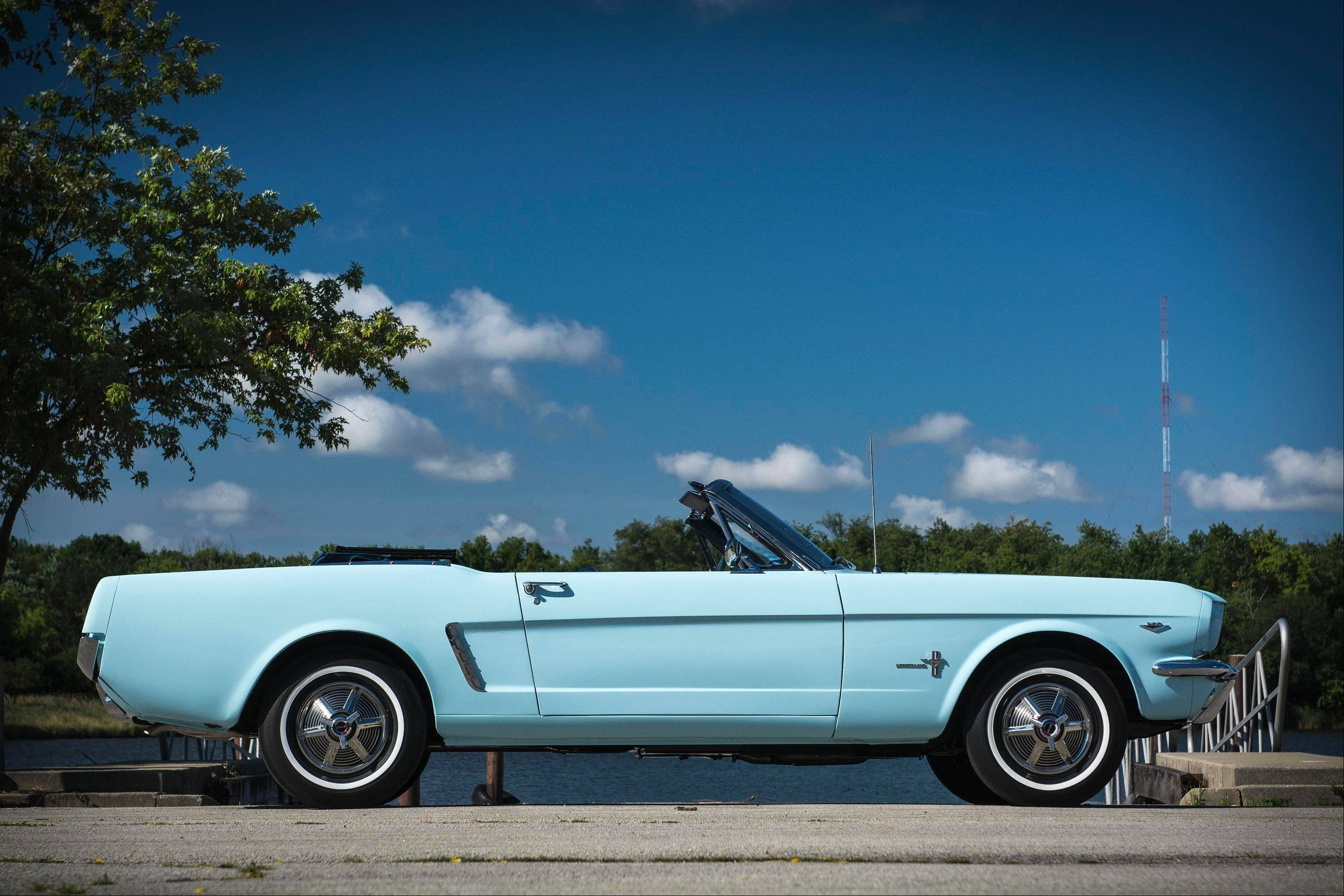 Gail Wise grew up in a family that loved convertibles. She and her dad bought this one from Johnson Ford on Cicero Avenue in Chicago.