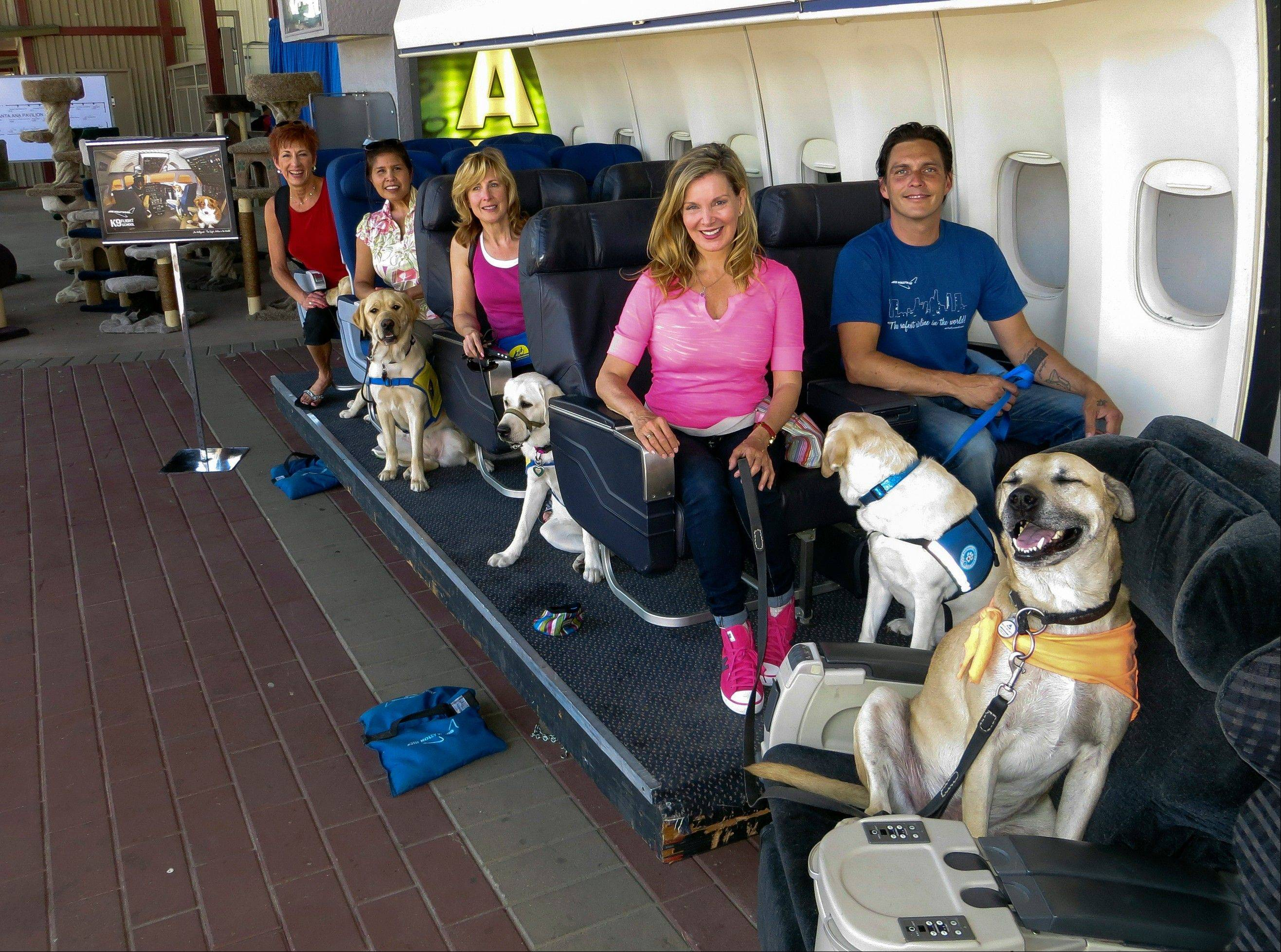 Megan Blake, Air Hollywood K9 Flight School program director, sitting left, front row, with dog Super Smiley, far right, and other puppies from the Canine Companions for Independence during a K9 flight simulation at the America's Family Pet Expo, at the Orange County Fair Grounds in Costa Mesa, Calif.