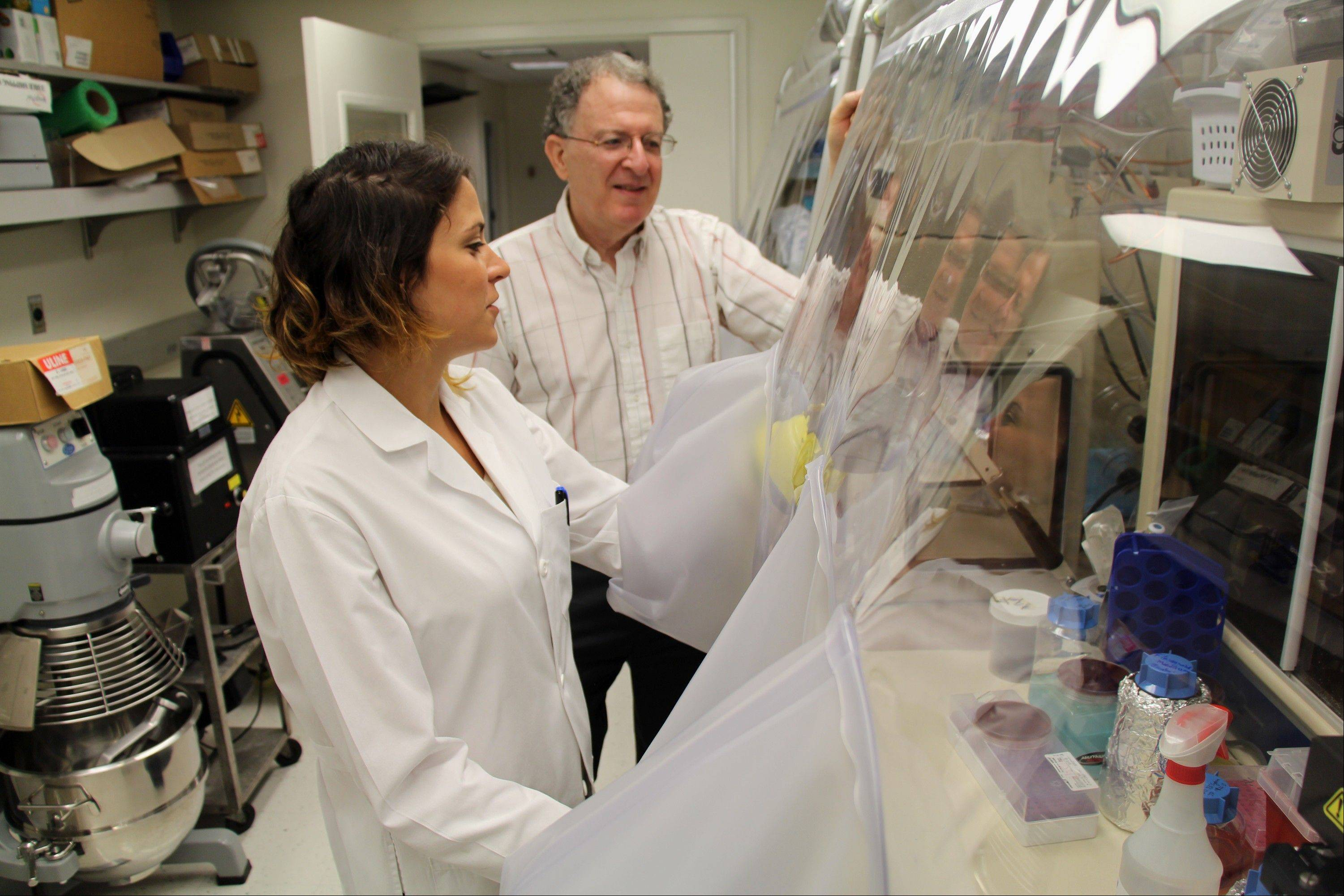 Dr. Jeffrey Gordon and graduate student Vanessa Ridaura of Washington University in St. Louis example samples of gut bacteria taken from fat or lean people. Their research transplanted human intestinal microbes into germ-free mice and found certain bugs may help fight obesity.
