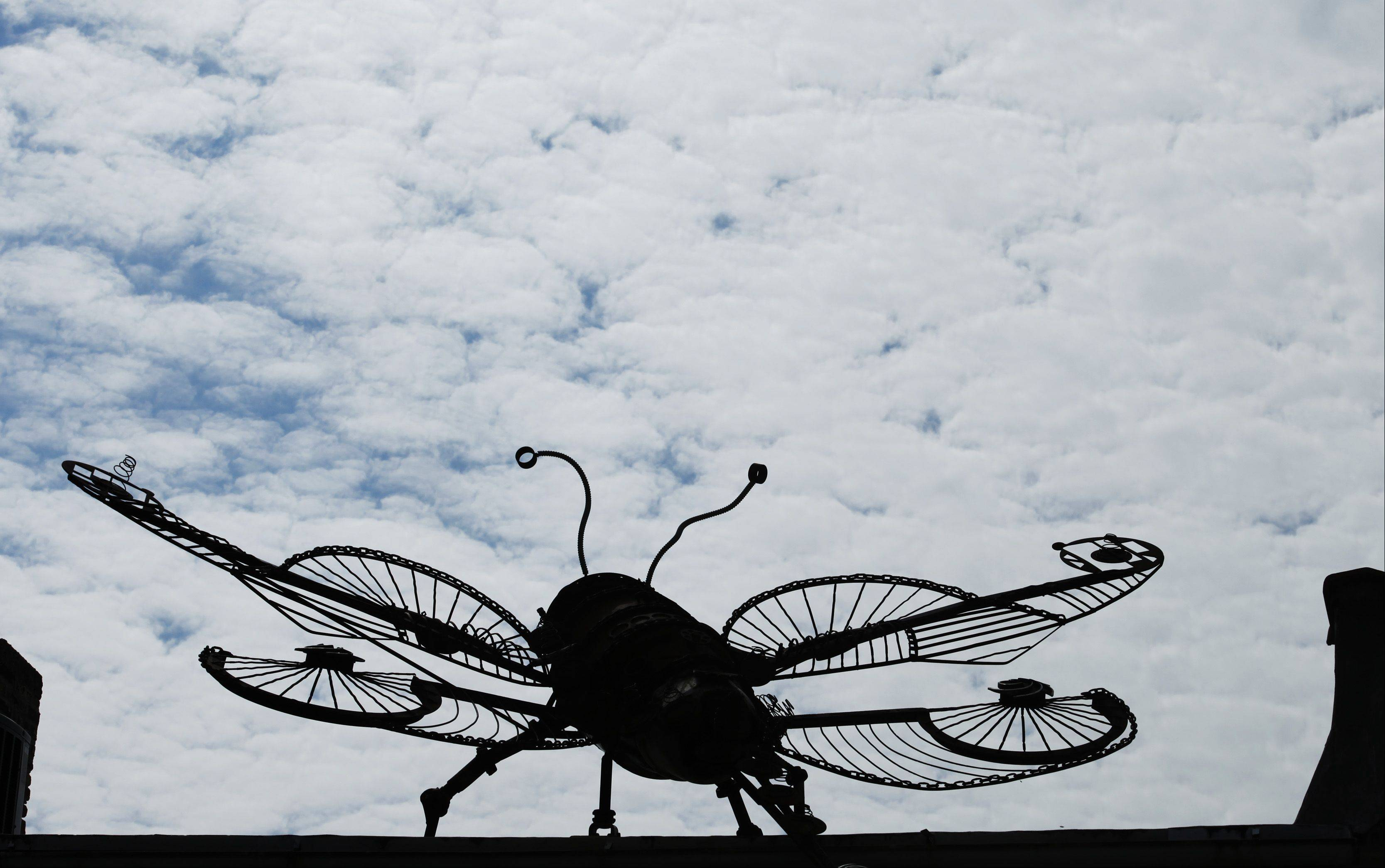 This giant metal sculpture of a bug caught my eye on a roof in downtown East Dundee recently. Either the owner of the building is a fan of insect art, or it's a display piece for a nearby art gallery. Either way, it looked like it was ready to take off into the clouds on the day I happened past. This photo was published in the weekly Perspective column of the print edition.