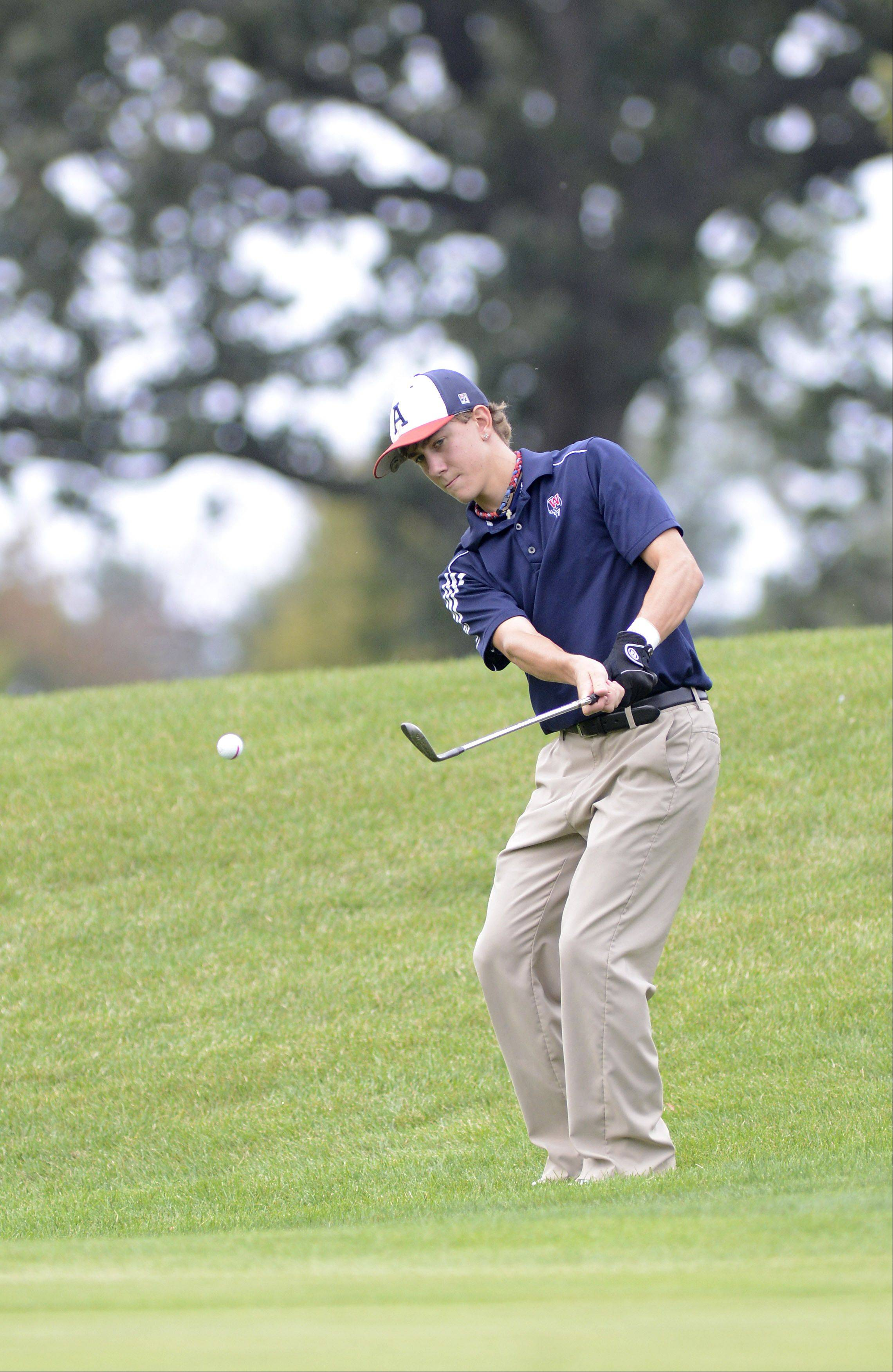 West Aurora's Mike Golich chips onto the fourth green at Phillips Park Golf Course in Aurora on Wednesday.