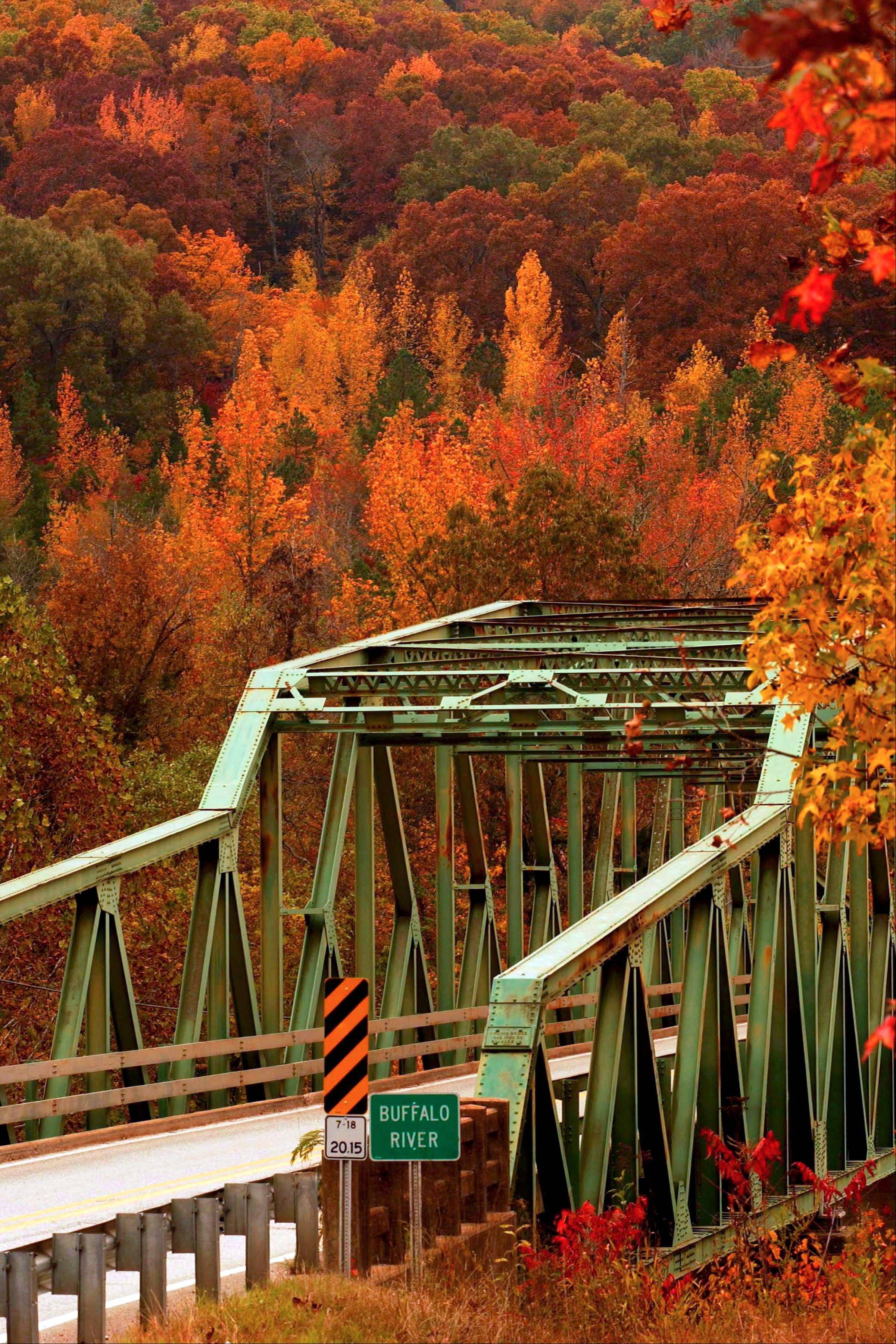 Take in fall foliage on Highway 7 along the Buffalo River in Pruitt, Ark. The changing leaves of state's hickory, oak and sweet gum trees lure thousands of visitors every fall.