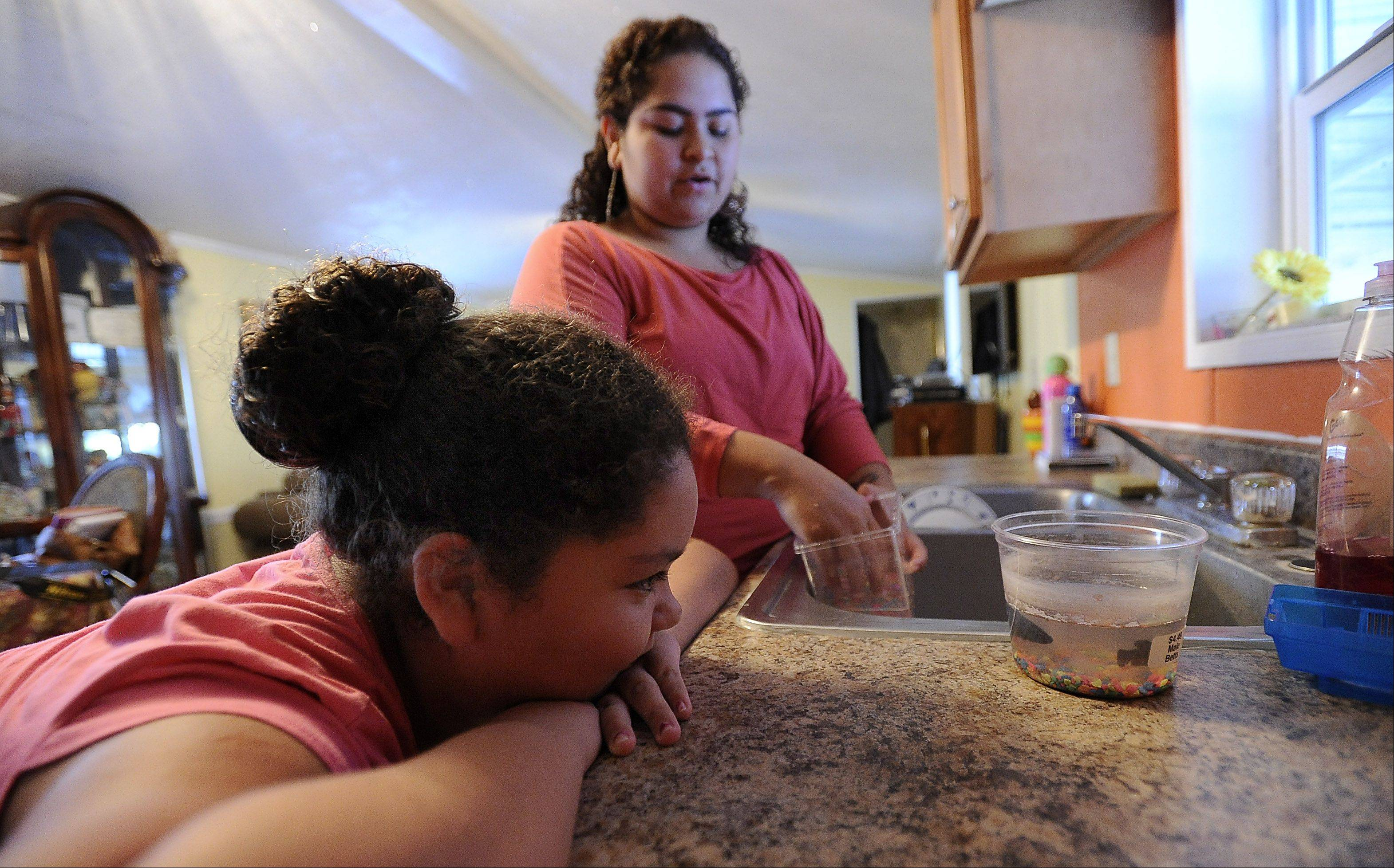Since losing their mother 2½ years ago, Greta Ramirez, 12, and her sister Karen Ramirez, 22, have taken on household duties, including cleaning the fish tank.