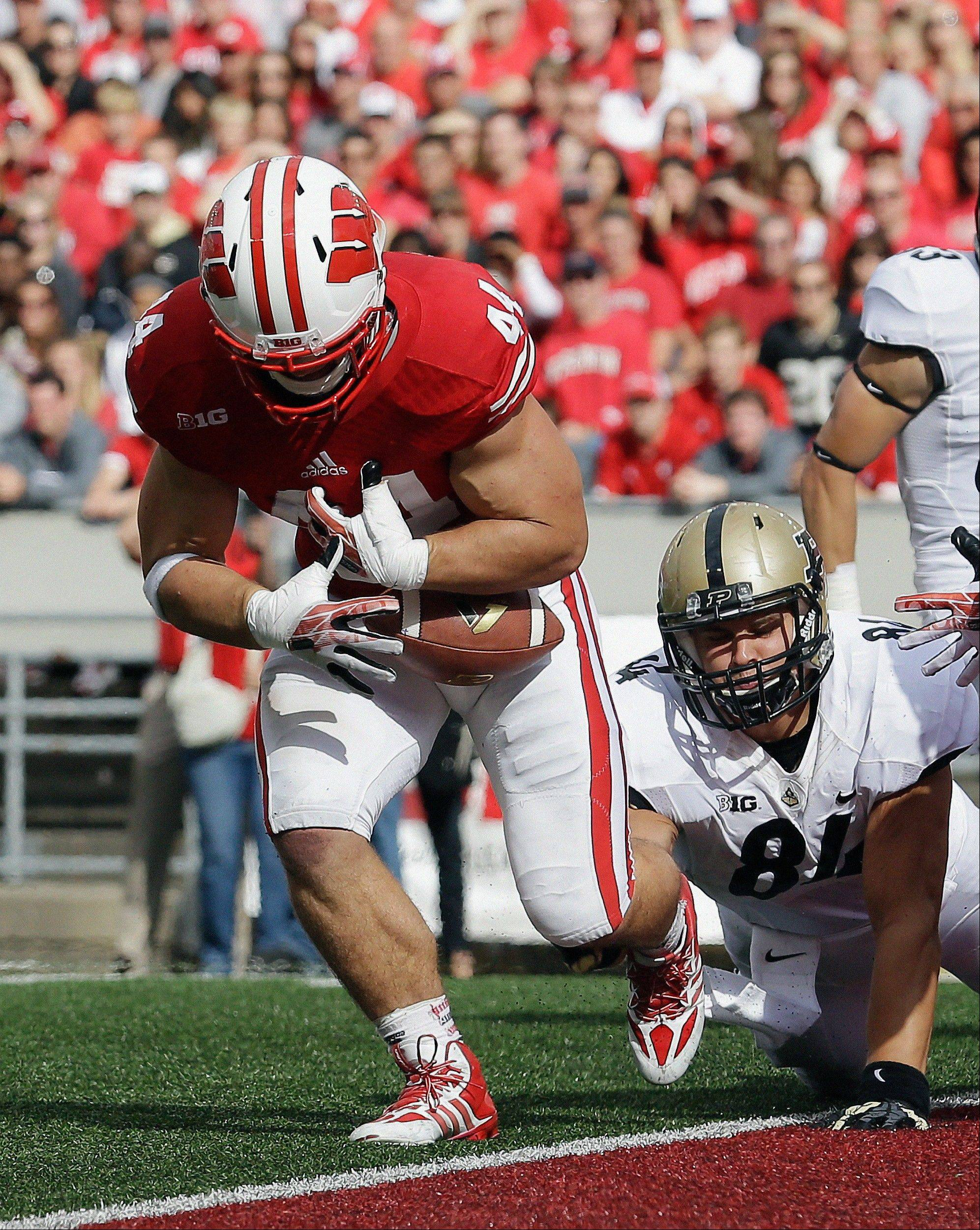 Wisconsin�s Chris Borland nearly intercepts a pass in front of Purdue�s Justin Sinz during the first half Saturday�s game in Madison.