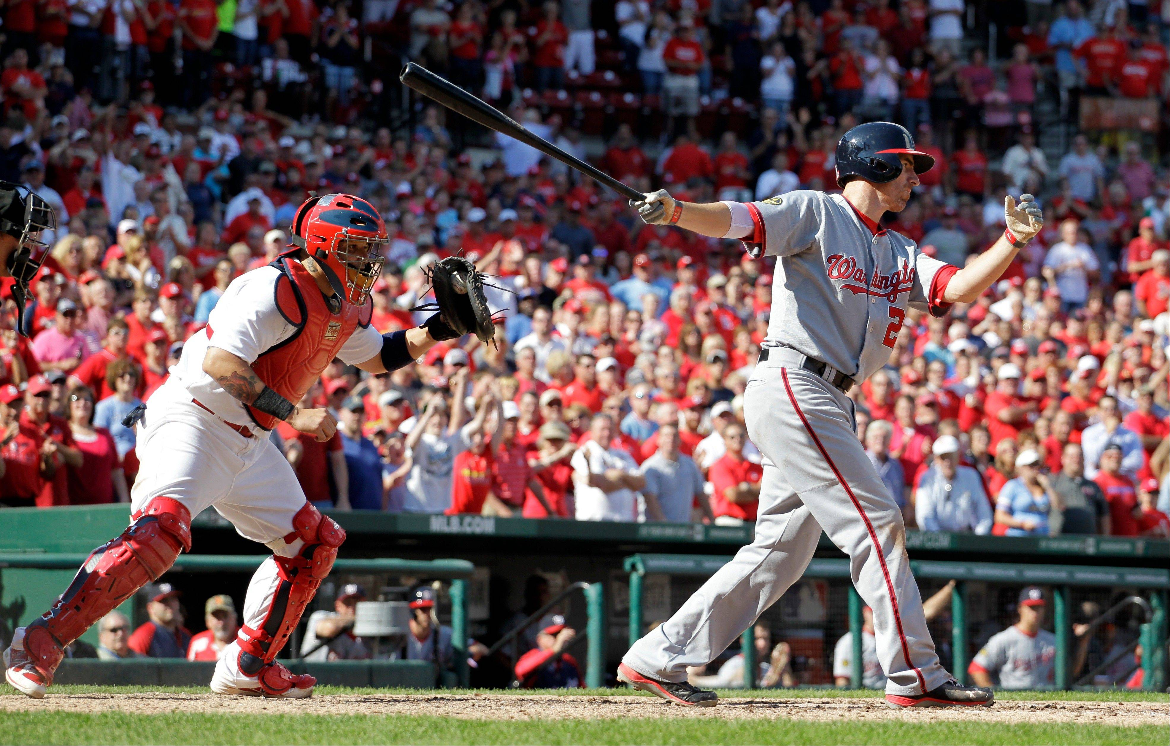 St. Louis Cardinals catcher Yadier Molina, left, celebrates as Washington Nationals' Adam LaRoche strikes out swinging for the final out of a baseball game Wednesday in St. Louis. The Cardinals won 4-1.