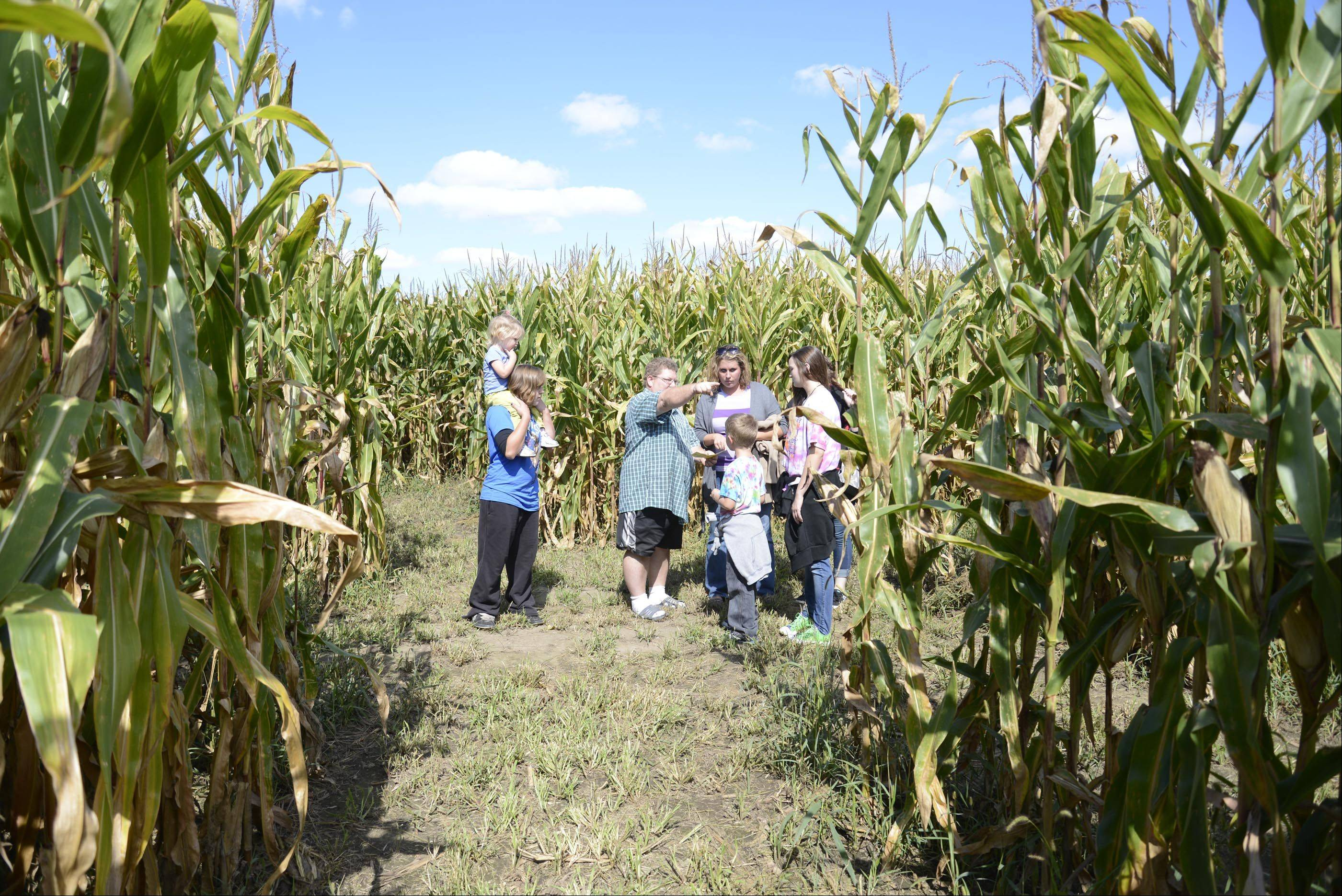 Owner Ben Norton gives directions to Jessica, Brody, Kelsey and Lexi Hanson, of St. Charles, and Hayle and Katy Pillsburg, of Maple Park, at the Norton's Produce & Garden Center corn maze.