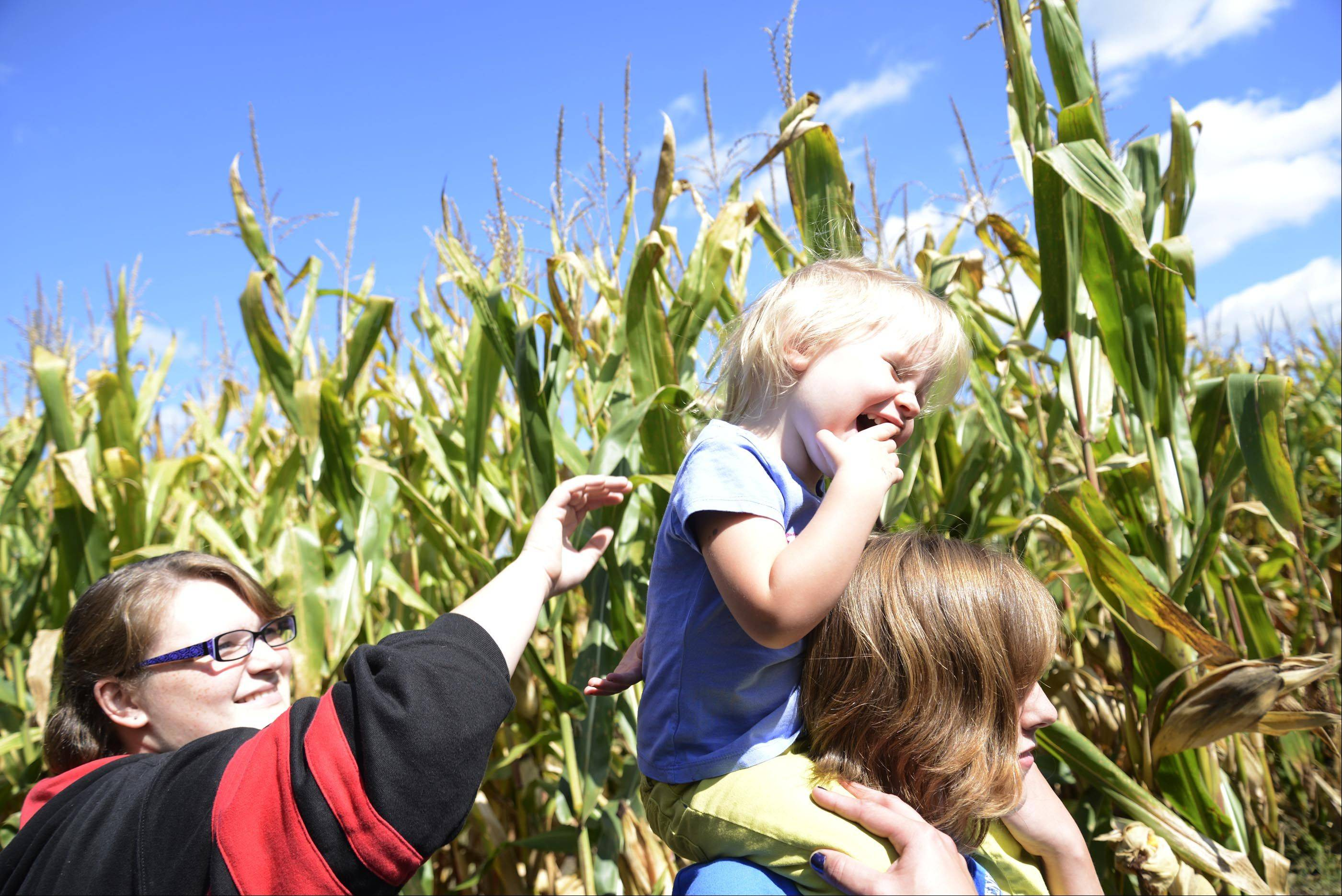 Lexi Hanson laughs on the shoulders of Hayle Pillsburg, of Maple Park, as her sister Kelsey Hanson teases her at the Norton's Produce & Garden Center corn maze.