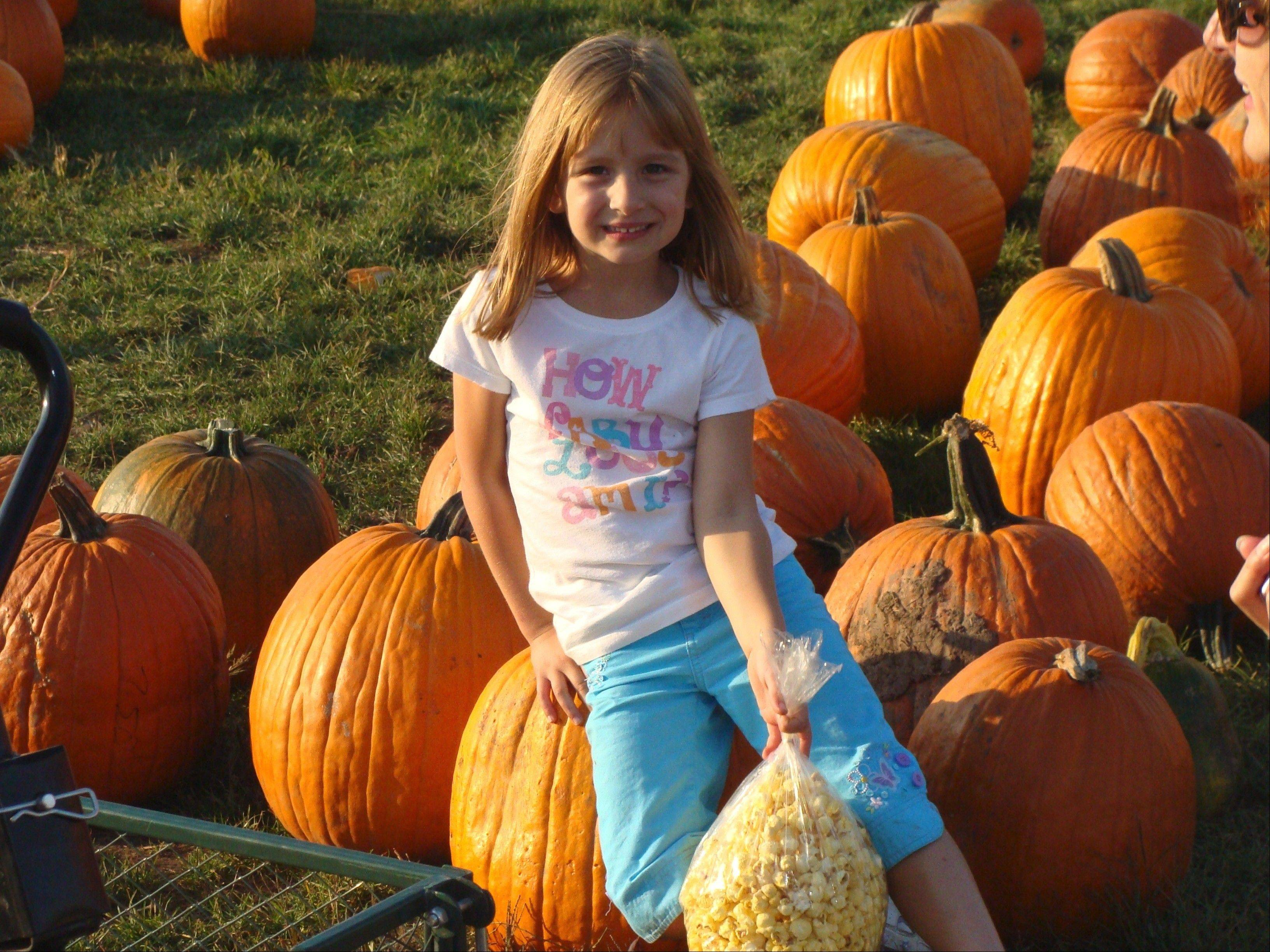 Fall fun of all kinds awaits at Richardson Farms in Spring Grove.