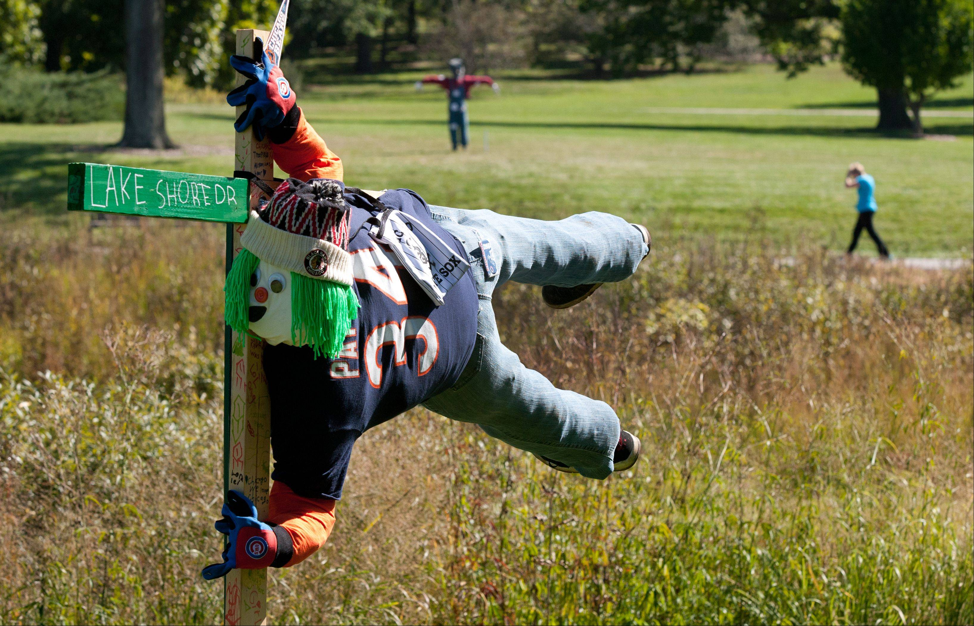 "Forty-five scarecrows decorated by area Girl Scout and Cub Scout troops are on display through this month at the Morton Arboretum in Lisle, including ""Windy City Scarecrow"" by a troop at Waterbury Elementary School in Roselle."