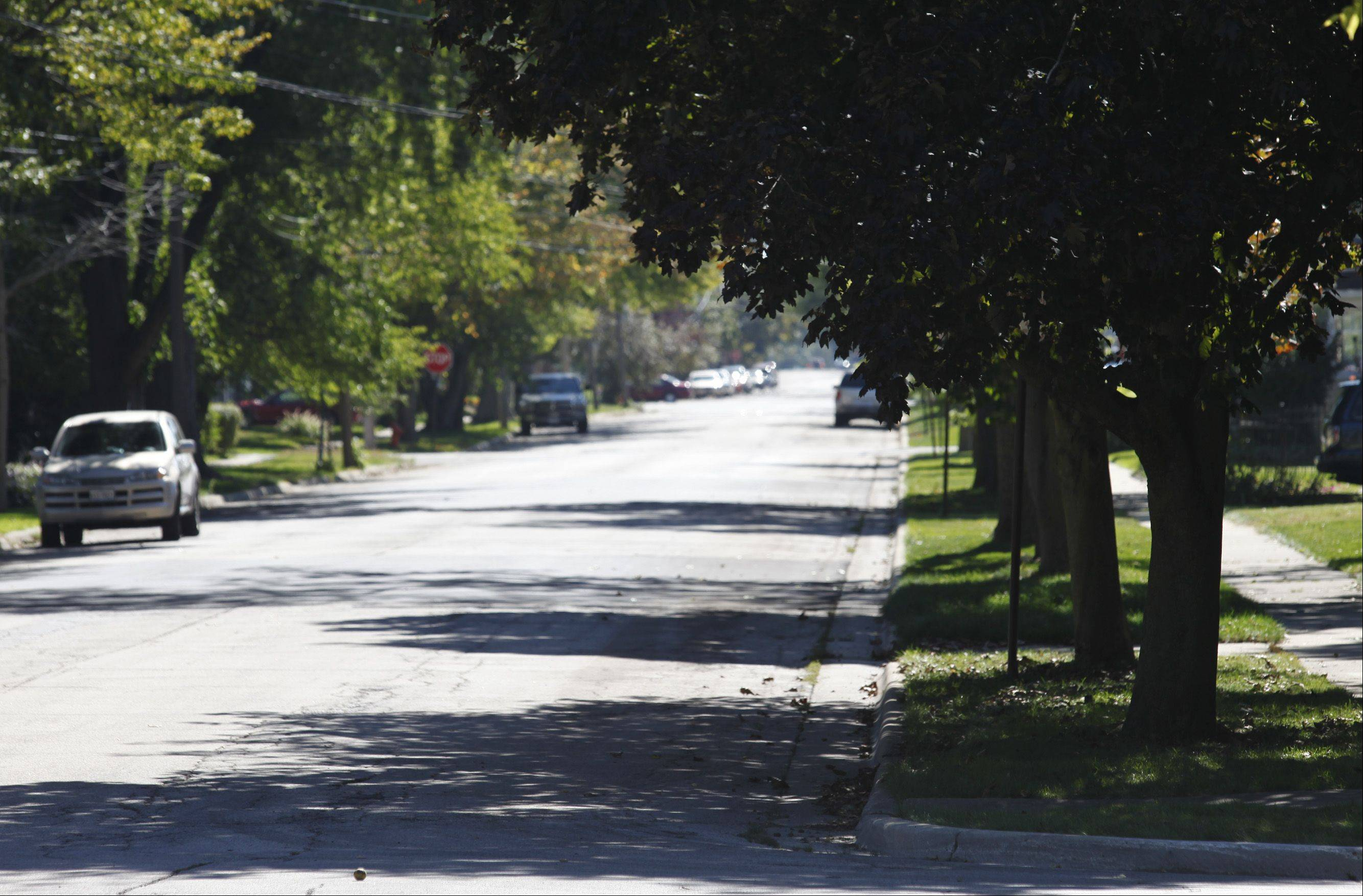 The city of Elgin is expected to create new bike lanes along the south side of Congdon Avenue and the west side of Prospect Boulevard on the city's northeast side. This view looks south along Prospect Boulevard. The city council's committee of the whole approved the plan on Wednesday.