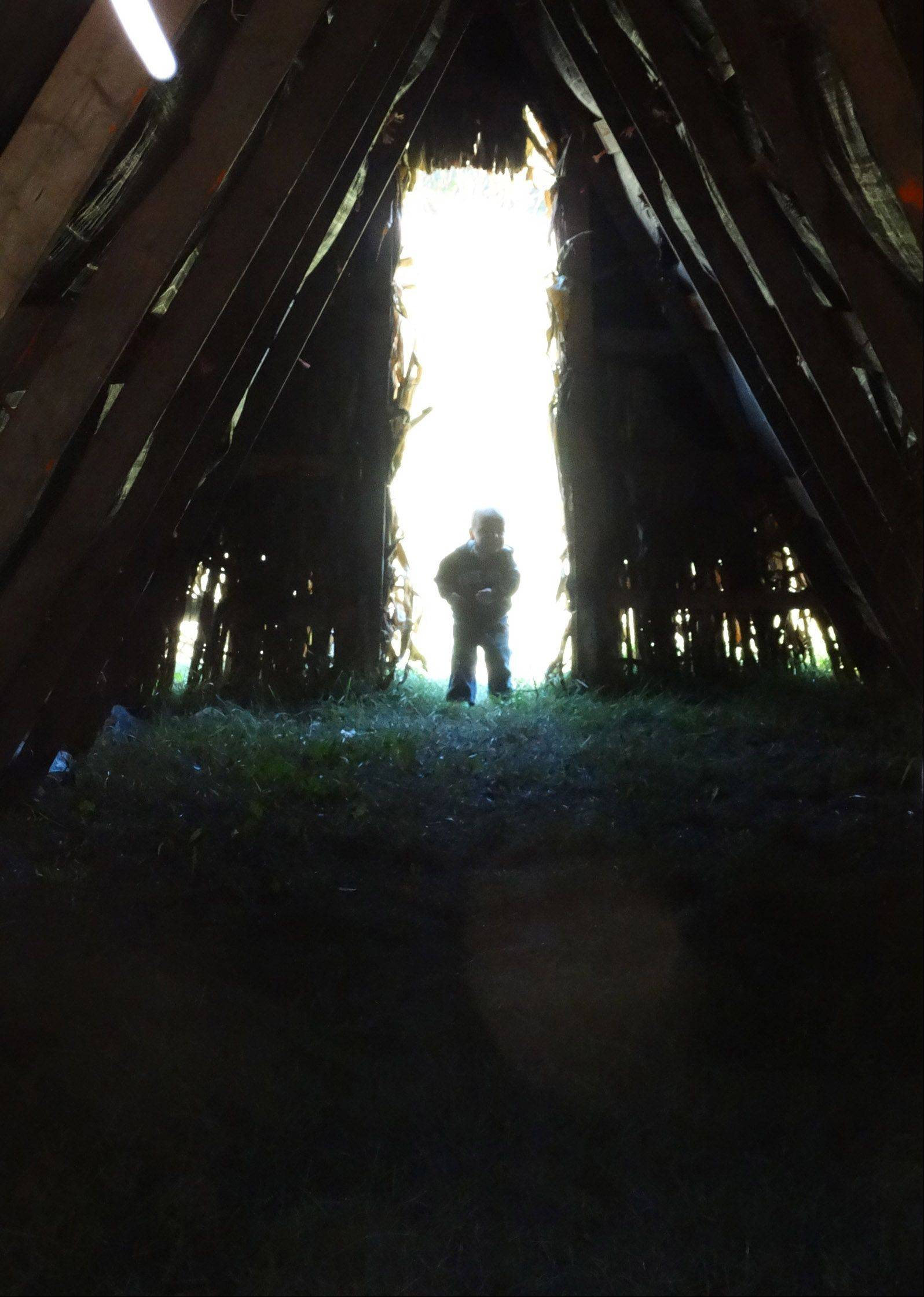 After walking through the corn teepee, Zachary Jackson takes a peek back inside to look for his mommy on Friday, September 13th, at Norton Farm in St. Charles.