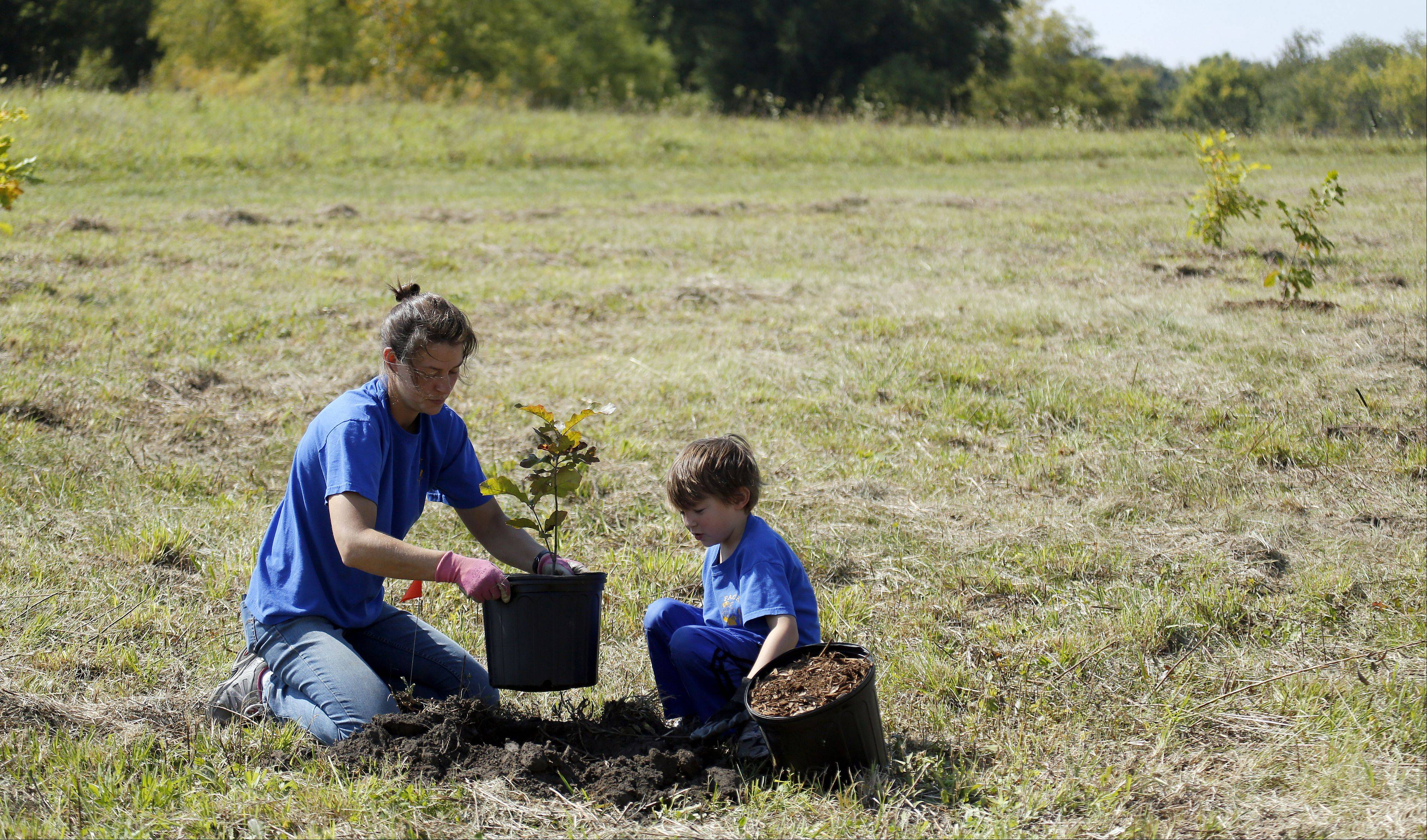 Six-year-old Torin Holda of Geneva and his mom Jaimie prepare to plant a tree. Volunteers helped plant 600 oak trees in under three hours as part of National Public Lands Day Saturday at Schweitzer Woods Forest Preserve near West Dundee.
