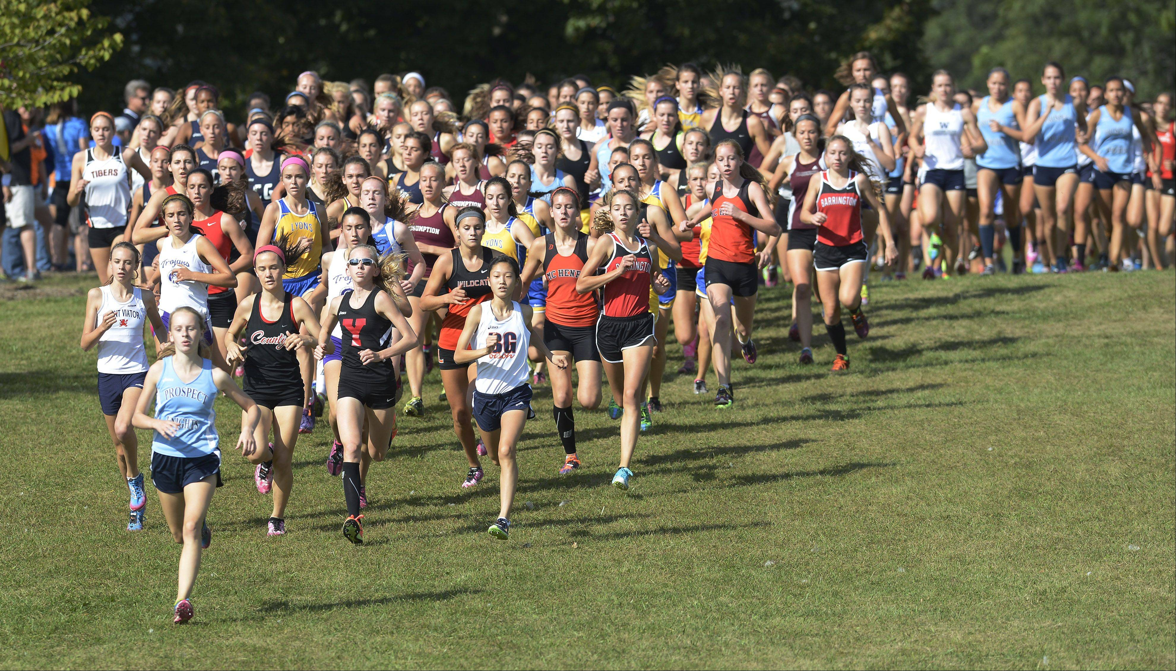 Runners descend a hill just after the start of the girls varsity race during the Palatine Invitational at Deer Grove East on Saturday.