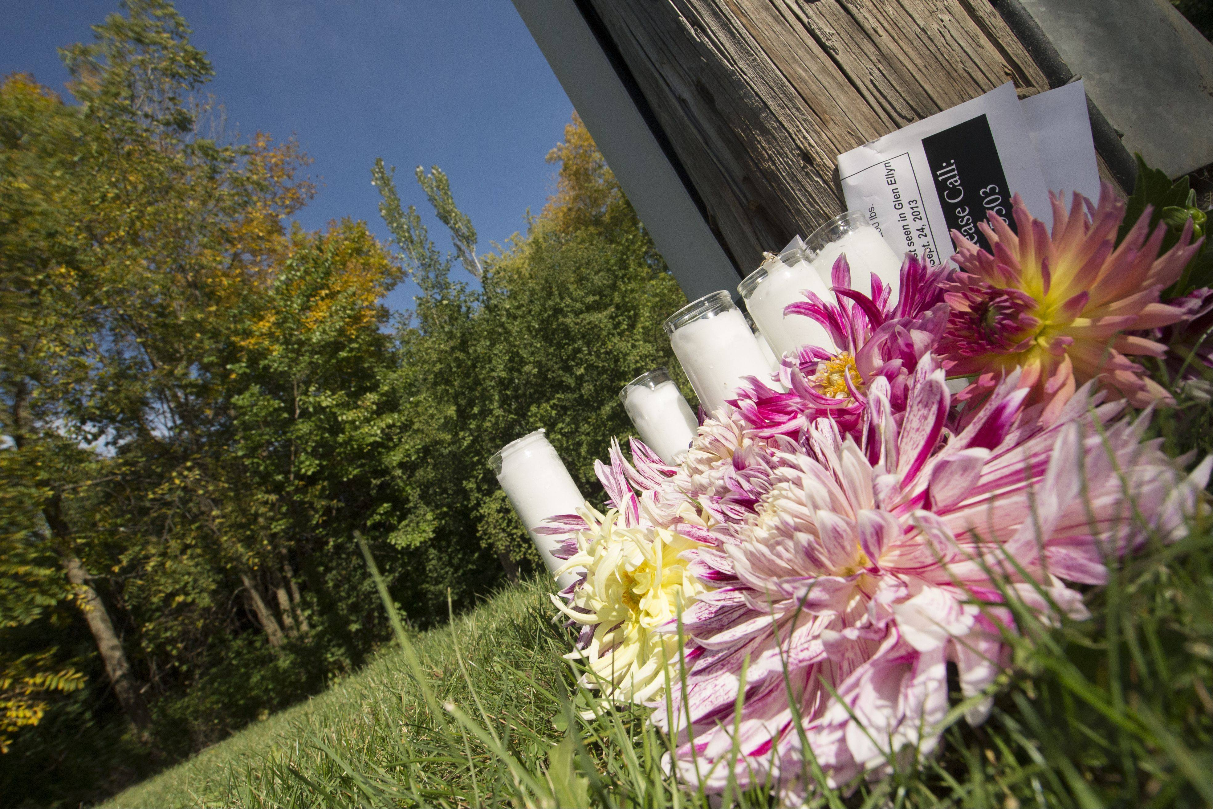 A small memorial sits in the wooded area of Glen Ellyn's Panfish Park where Linda Valez, 33, was found buried in a shallow grave early Saturday.