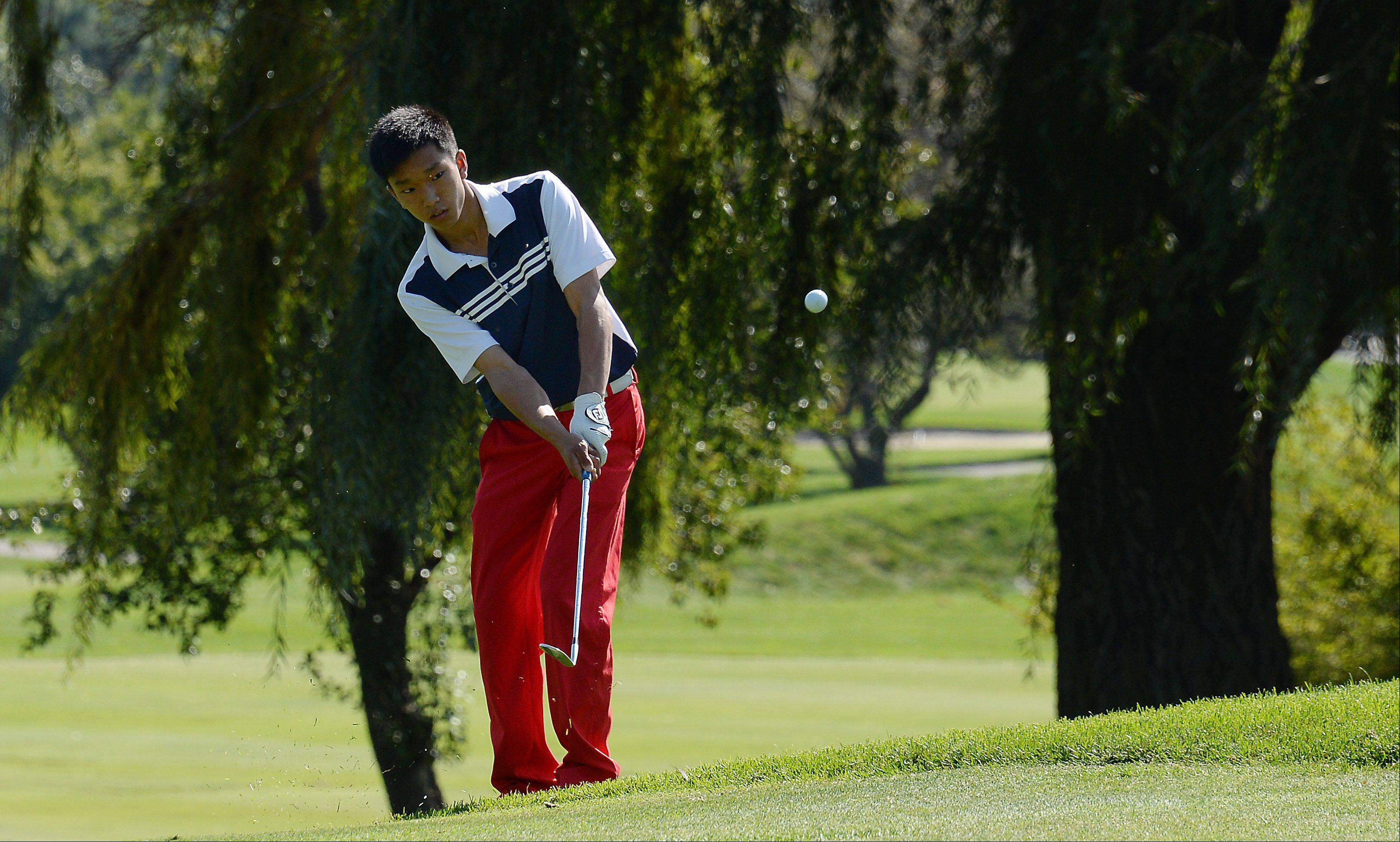 Conant's Jon Chang chips up on No. 8 during the Mid-Suburban League championship at Schaumburg Golf Club on Monday.