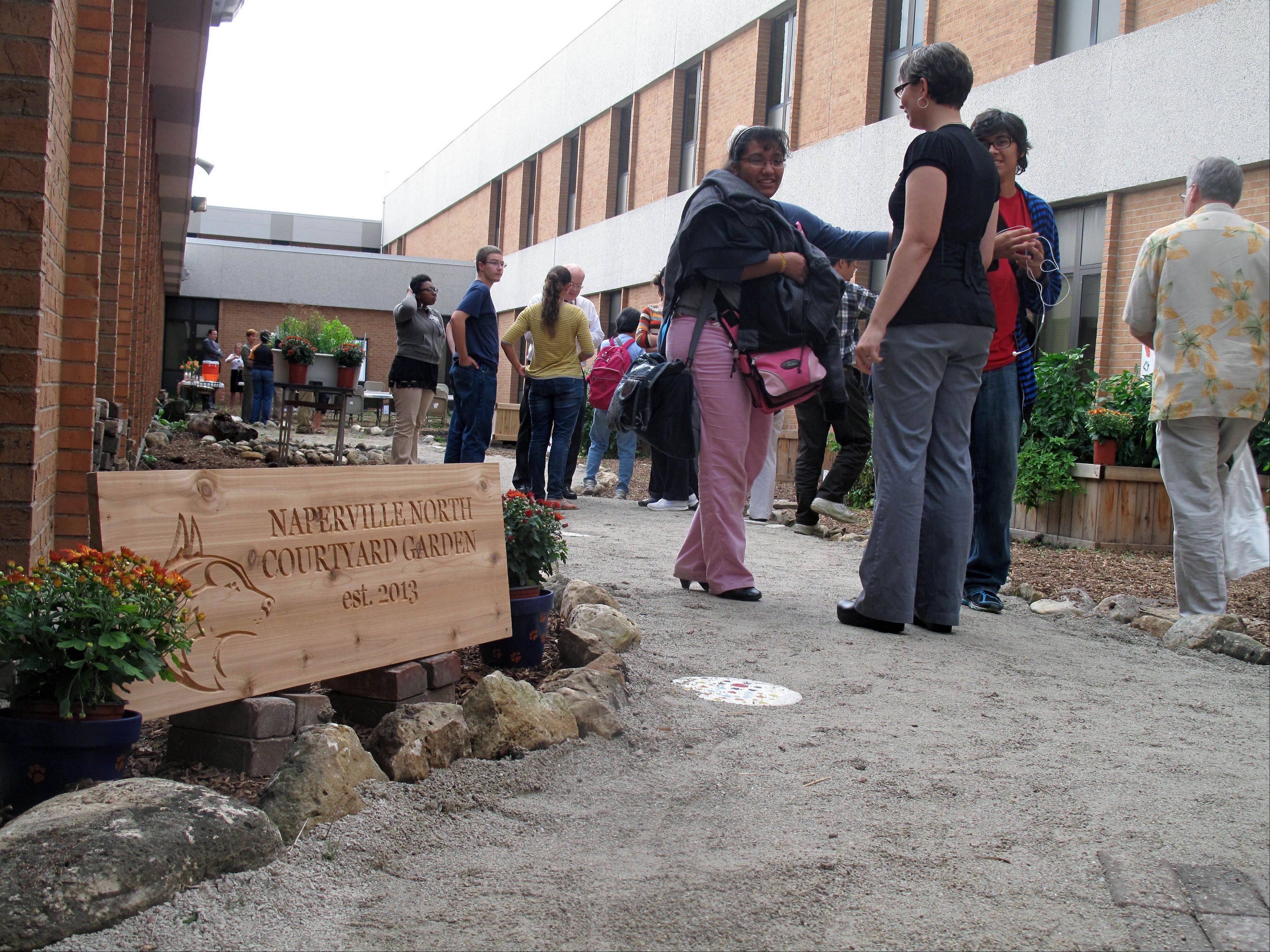 Naperville North students, teachers and parents show off the school's new courtyard garden Thursday during a celebration of the first harvest. The garden was tended by special education students and horticulture club members.