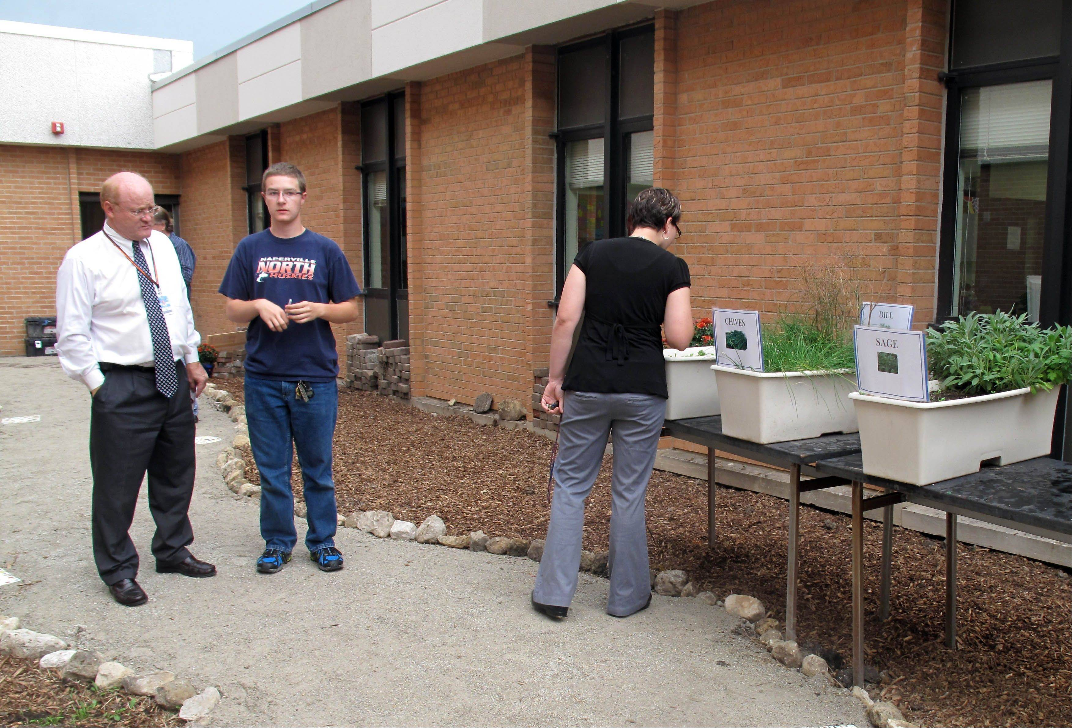 Naperville North senior and horticulture club member Jonathan Buettner talks with Principal Kevin Pobst during a harvest open house at the school's new courtyard garden. Buettner was among students who helped install a bed for herbs in the garden, which was created this spring.