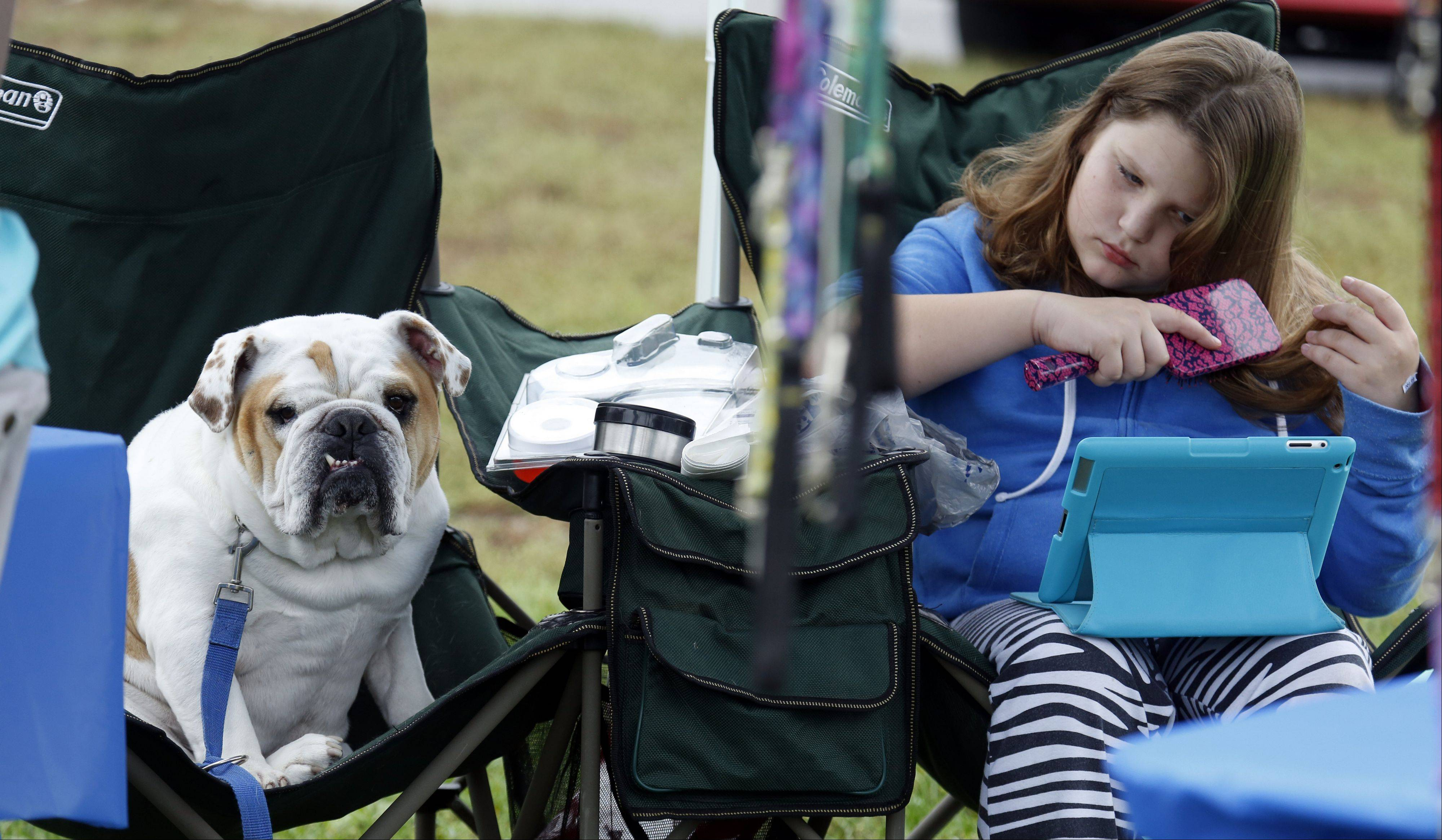 Lilly Tapper and her dog Bob, an English bulldog, wait for customers at the Doggie Styles Pet Grooming stand on Saturday during the annual Dog-tober Fest in Huntley.