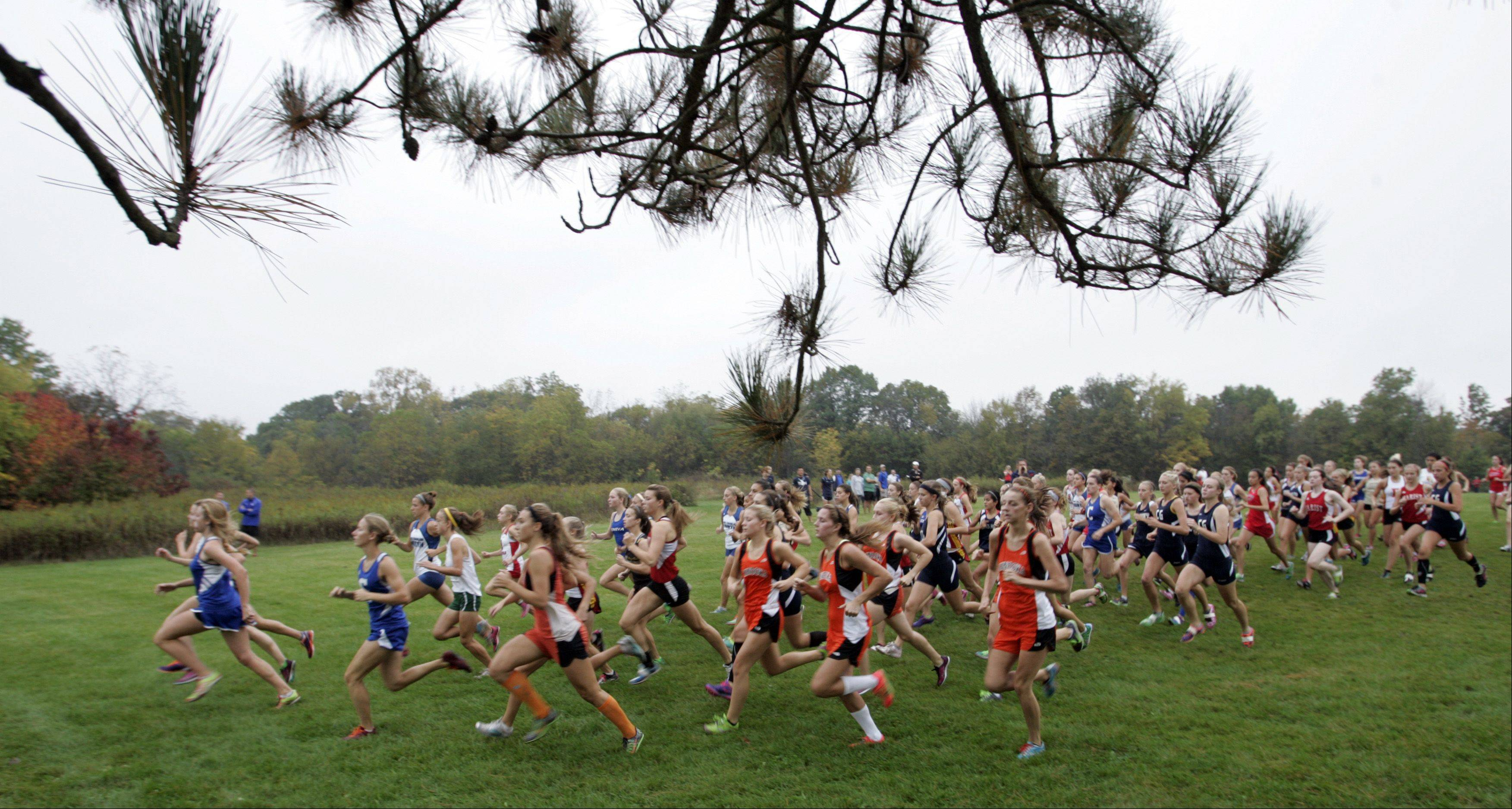 The start of the girls cross country at LeRoy Oakes in St. Charles Saturday.