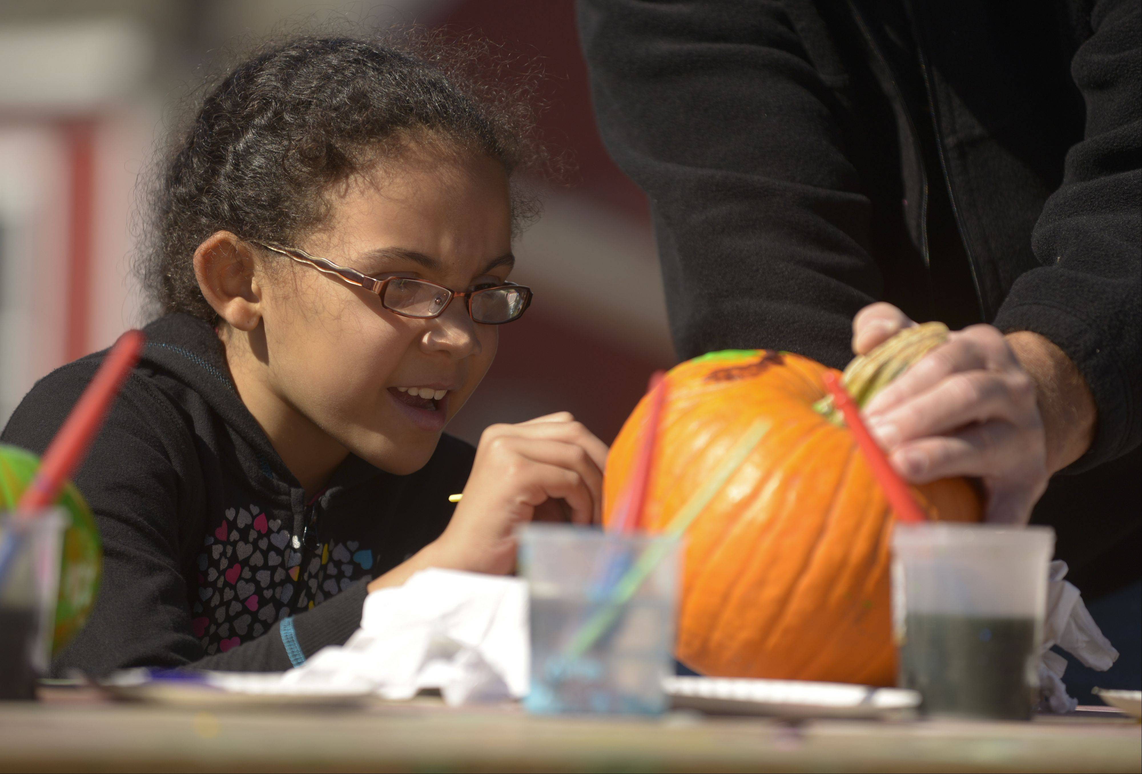Morgan Pfeifer, 7, of Waukegan paints pumpkins Sunday while visiting the Bonner Heritage Farm's Country Fair in Lindenhurst. The event featured wagon rides, crafts, games and a petting zoo on an 1842 farm.