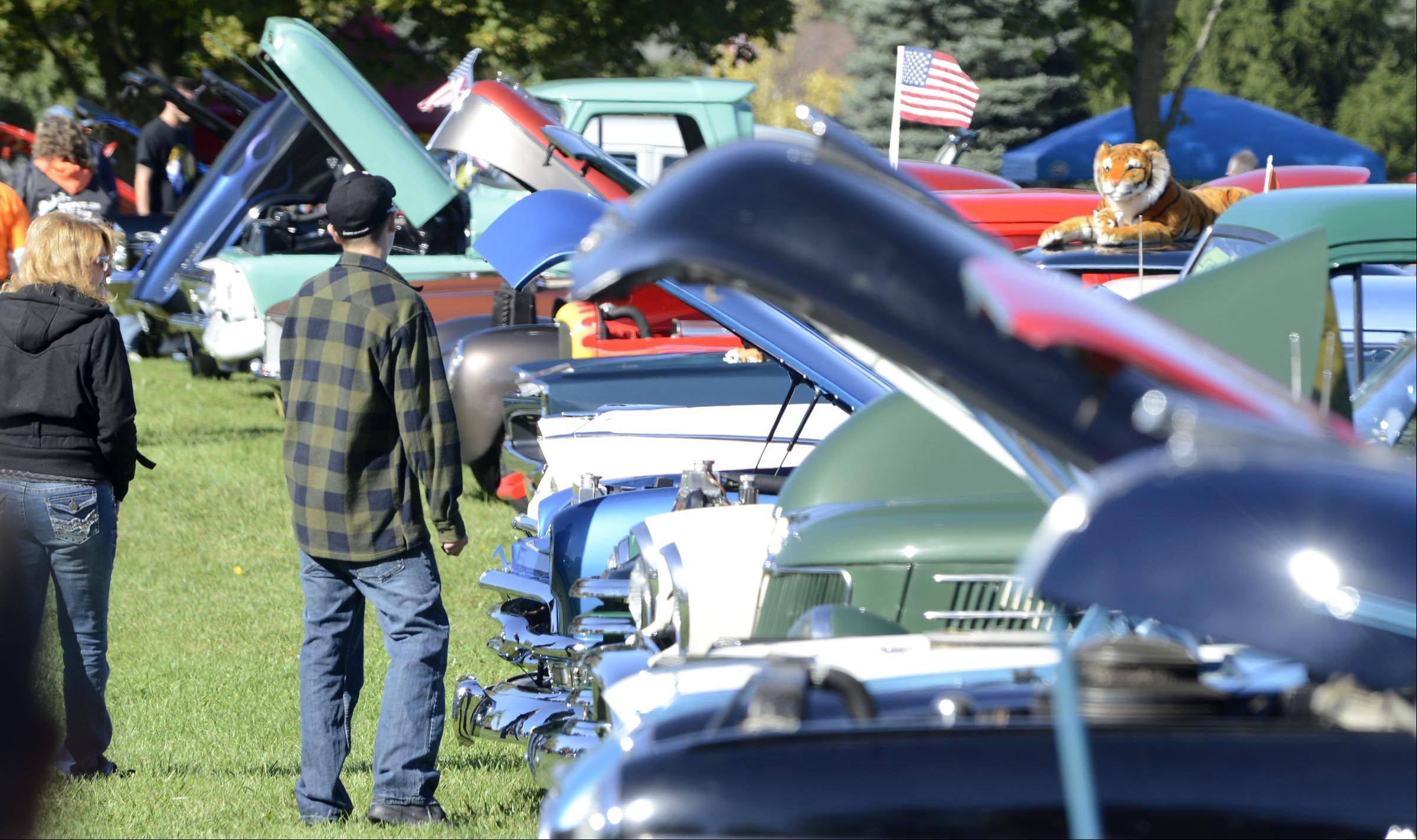 A stuffed tiger keeps an eye on spectators Sunday at the 20th Annual Fall Classic All Wheel Show sponsored by the Elburn Lions Club in Lions Park in Elburn. The event featured an estimated 400 cars on display.