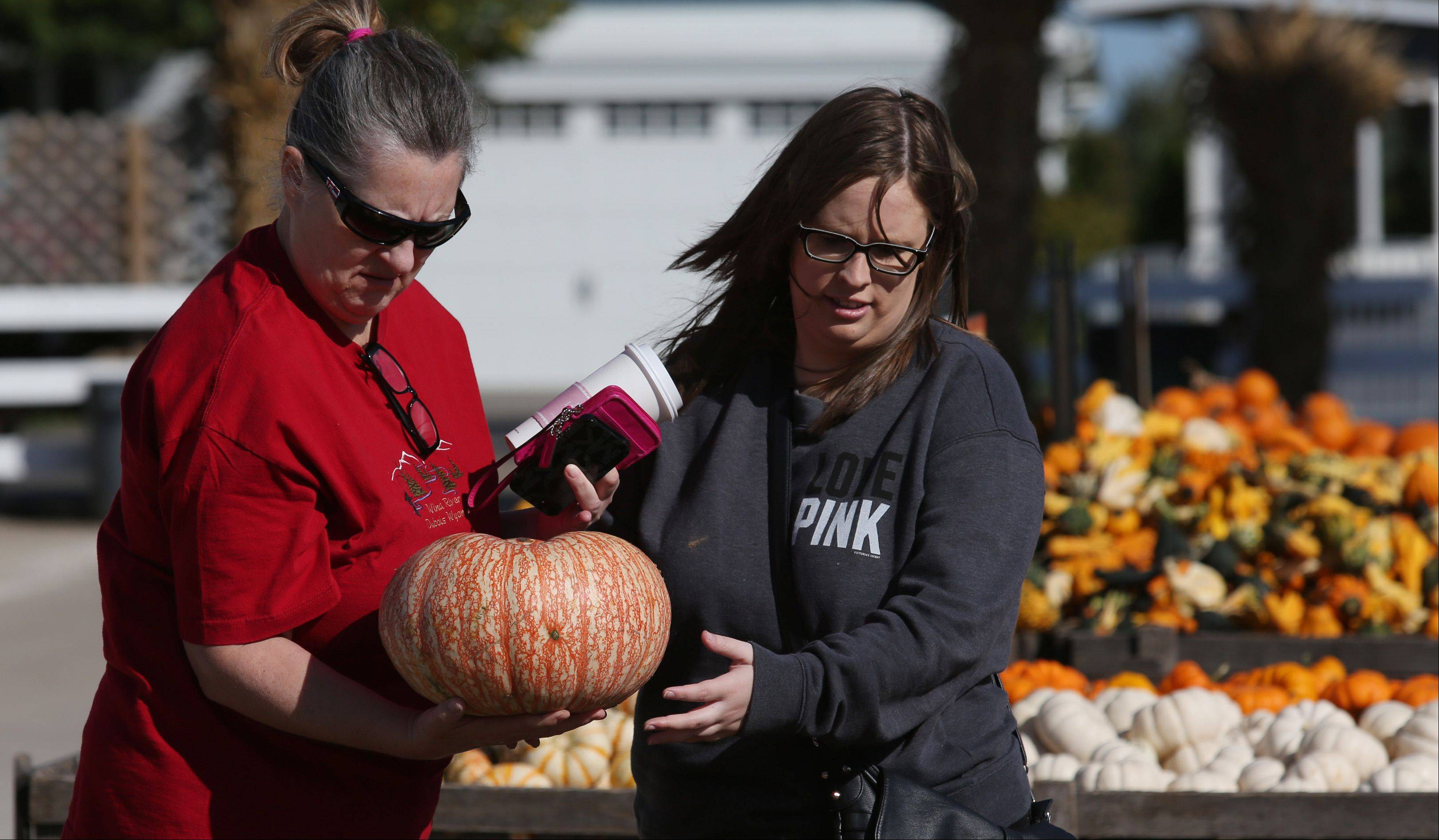 Vicki Hynes of Roselle, left, and her daughter Jessica pick out just the right pumpkins Monday afternoon at Goebbert's Pumpkin Patch in Hampshire.