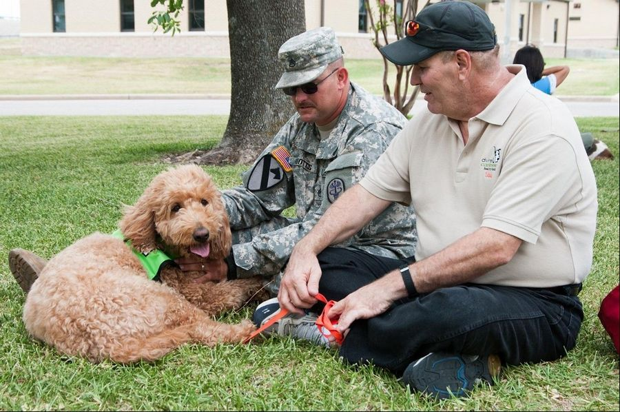Dave Keeler and his Goldendoodle, Magnolia, spend time with a veteran.