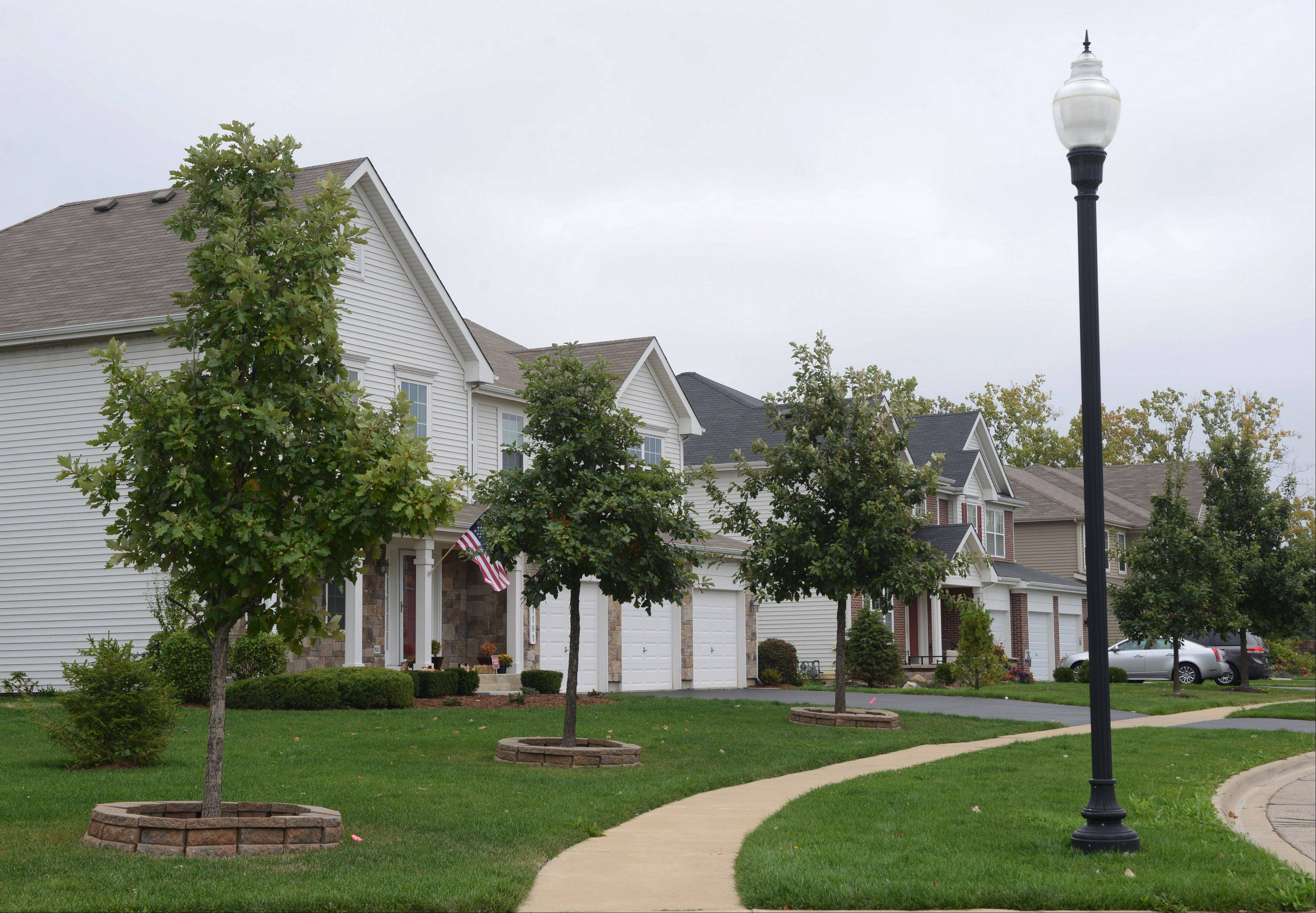 Theses homes along Tulip Tree Lane are typical of those found in the Cedar Ridge Estates subdivision off Cedar Lake Road in Lake Villa.