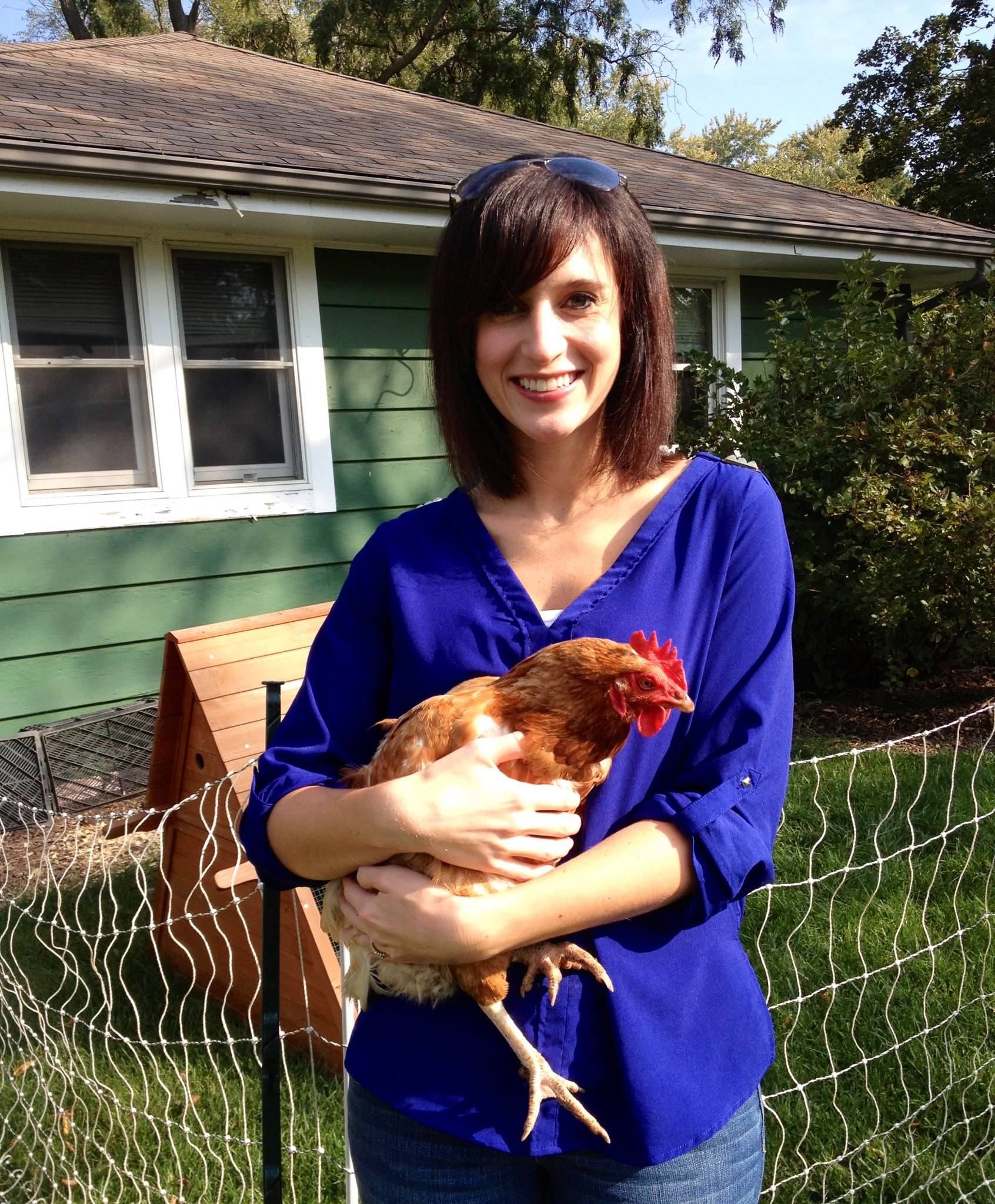 "Learn the basics of caring of chickens at the Oct. 26 ""Backyard Chickens"" workshop at the Prairie Crossing Farm in Grayslake."