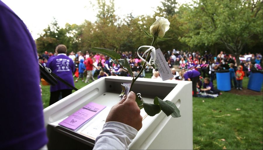 Roses are distributed to families during Naperville's ninth annual A Walk to Remember held at the Riverwalk Grand Pavilion. The walk benefits the Edward Foundation SHARE program.