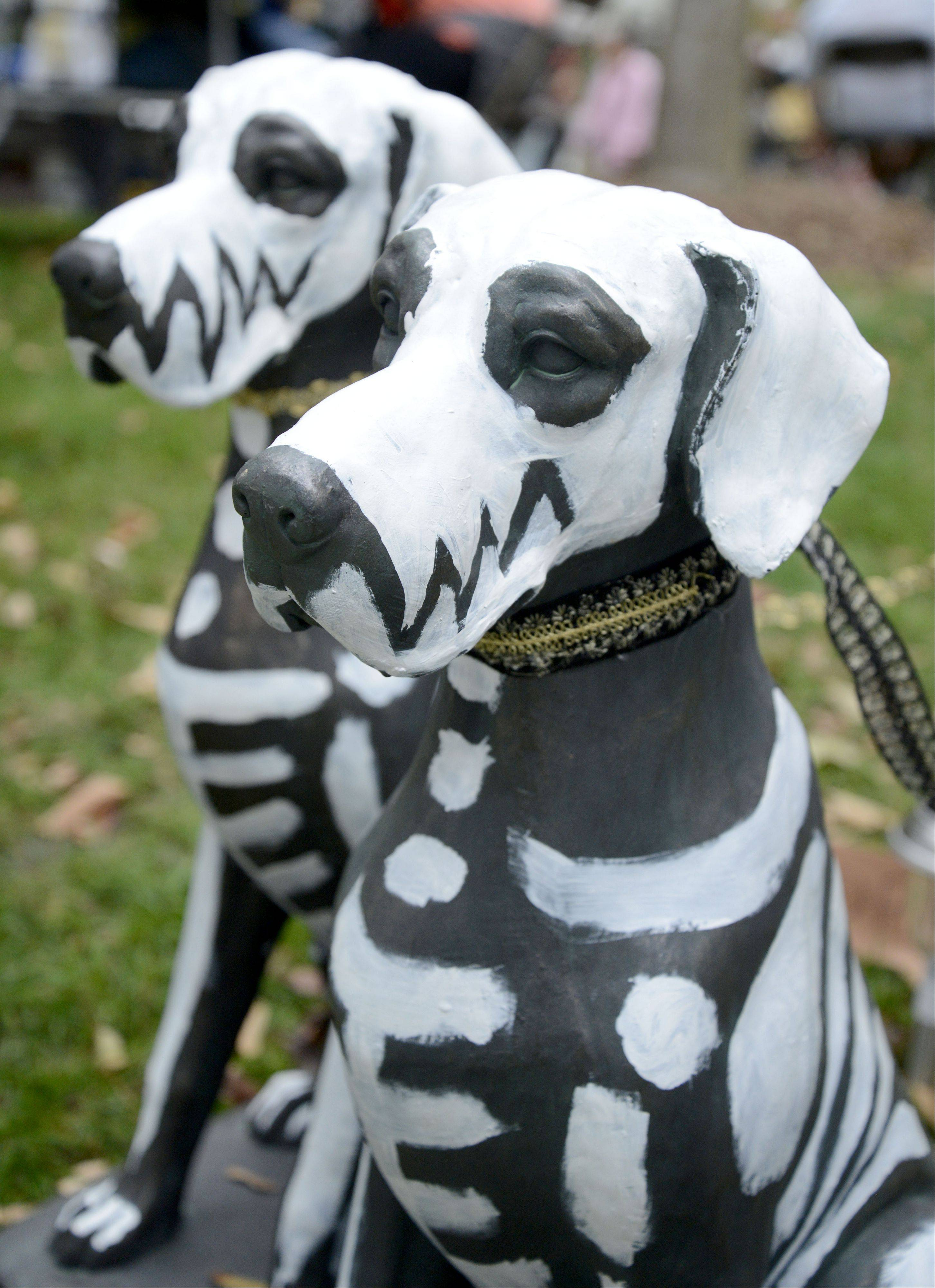 This is the entry by ROMP Italian Greyhound Rescue of Chicago at the Scarecrow Fest in St. Charles' Lincoln Park.