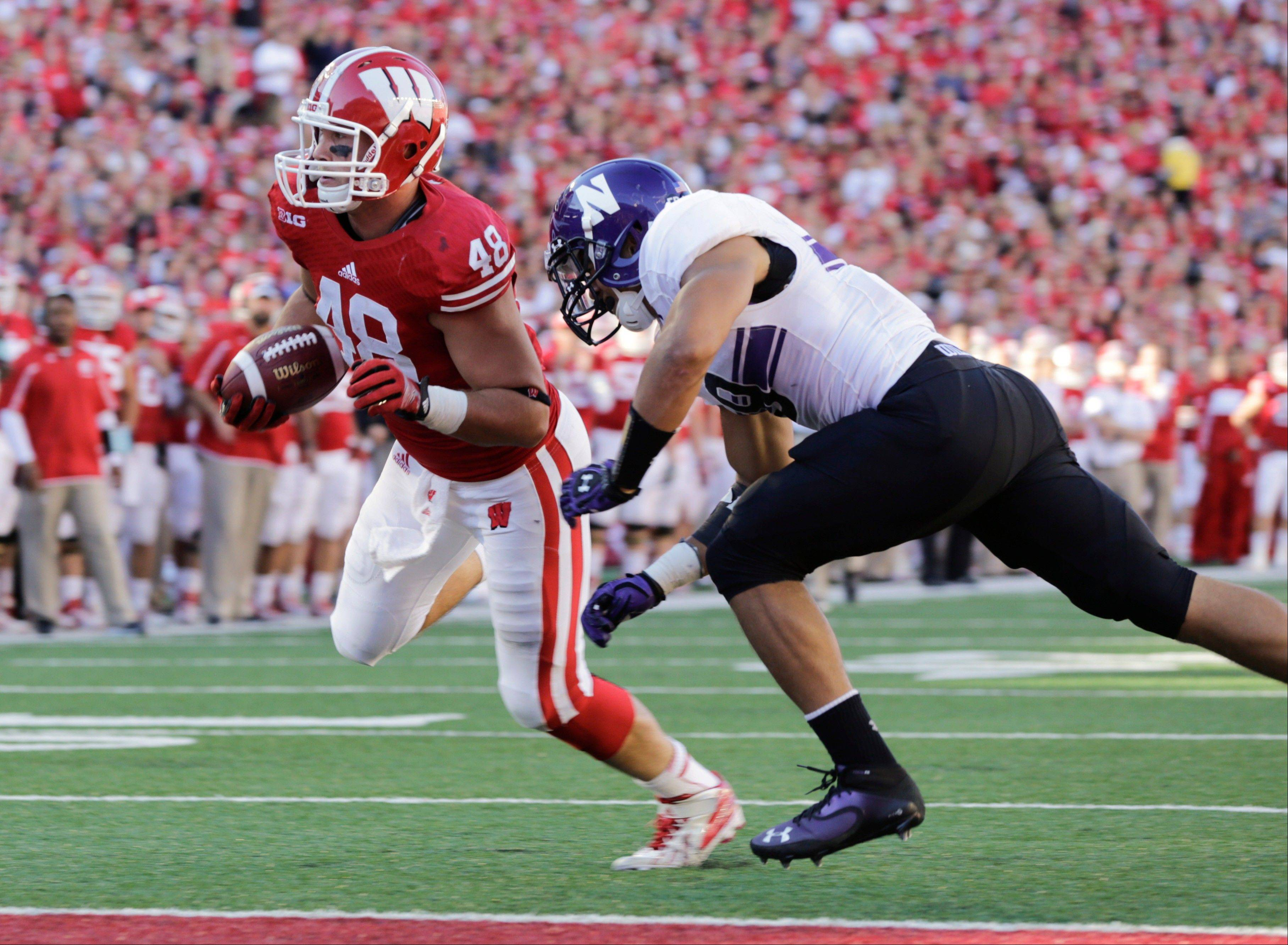 Wisconsin tight end Jacob Pedersen runs in for a 1-yard touchdown against Northwestern safety Jimmy Hall during the second half of Saturday�s game in Madison. Wisconsin upset Northwestern 35-6.