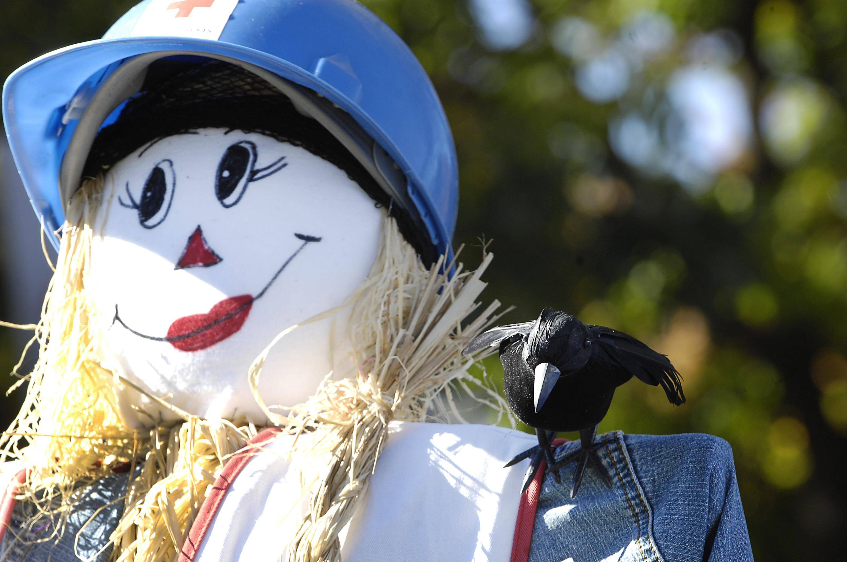 A crow sits on the shoulder of a friendly scarecrow Sunday at the 28th annual St. Charles Scarecrow Festival.