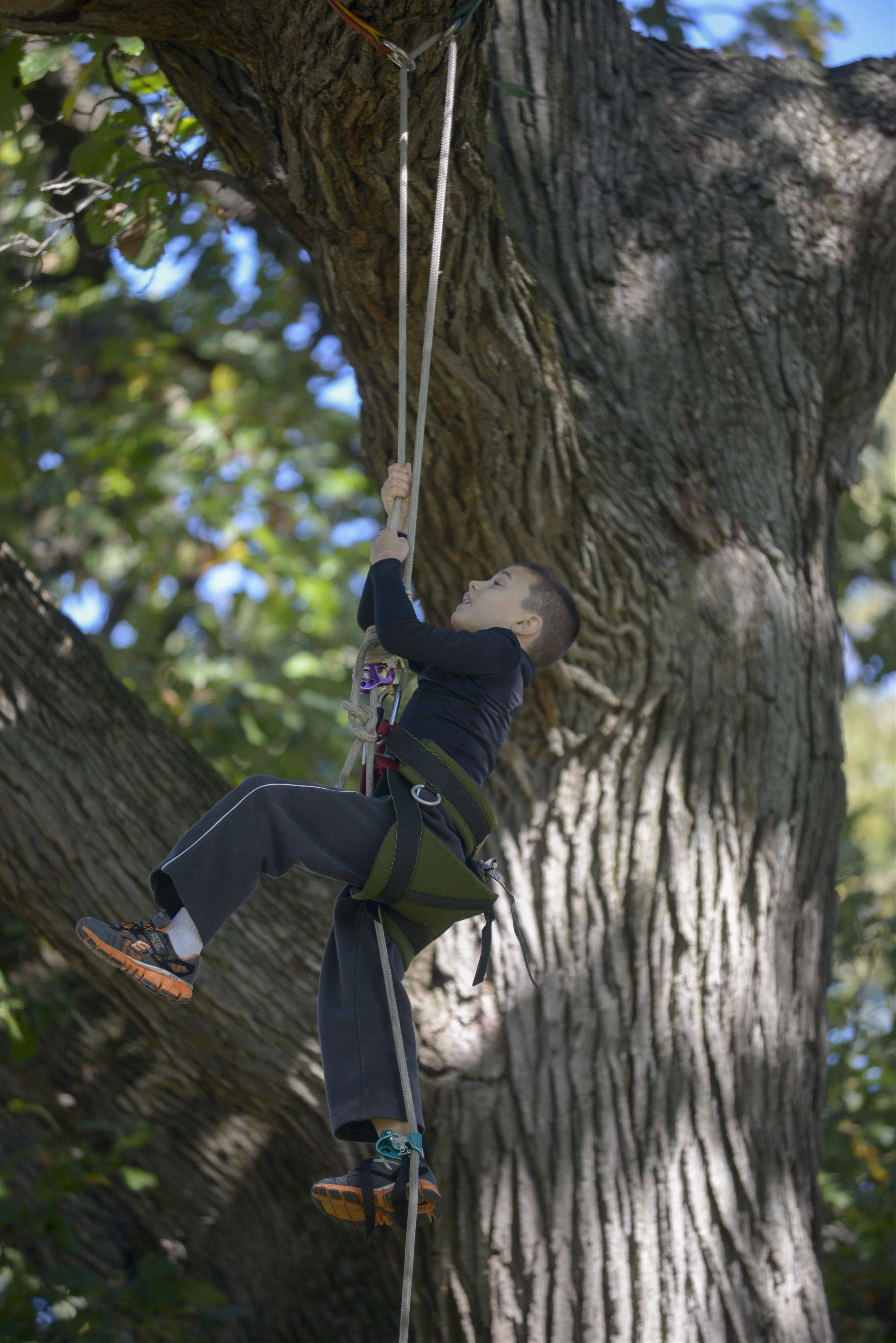 "Jake Wagner, 6 of Addison completes the ""Canopy Climb"" at the Danada Fall Festival on Sunday in Wheaton."