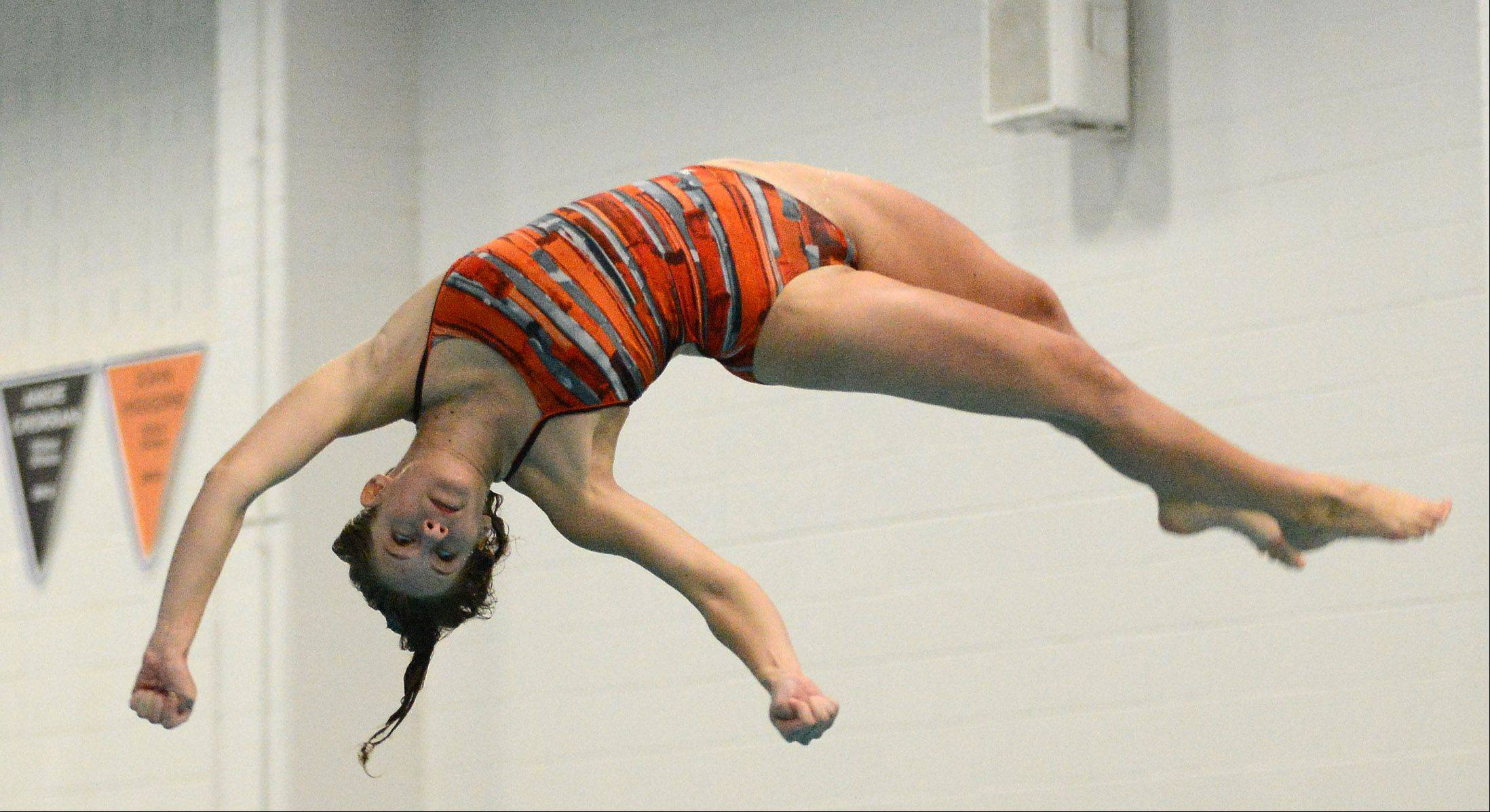 St. Charles East's Dana Ritter competes in the diving portion of Thursday's swimming meet in St. Charles.